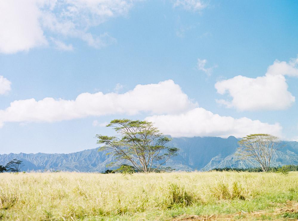 Kauai blogger-8.jpg