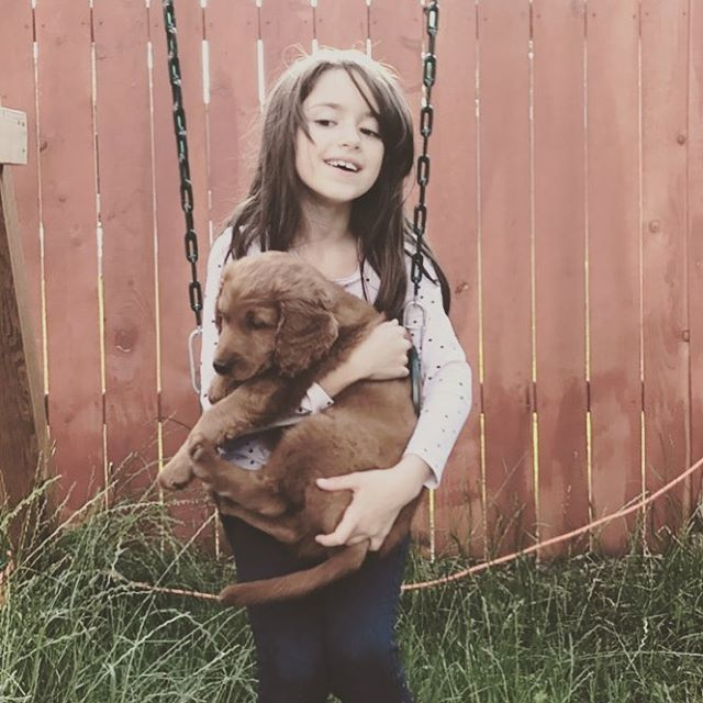 Fatherhood 101 : buy your daughter a puppy. . . . . . . . . . . . . . . .  #rare #life #love #puppy #goldendoodle #instadaily #instagram #pnw #motivation #inspiration #goodlife #goodvibes #instagood #dad #doodle #dog #dogs