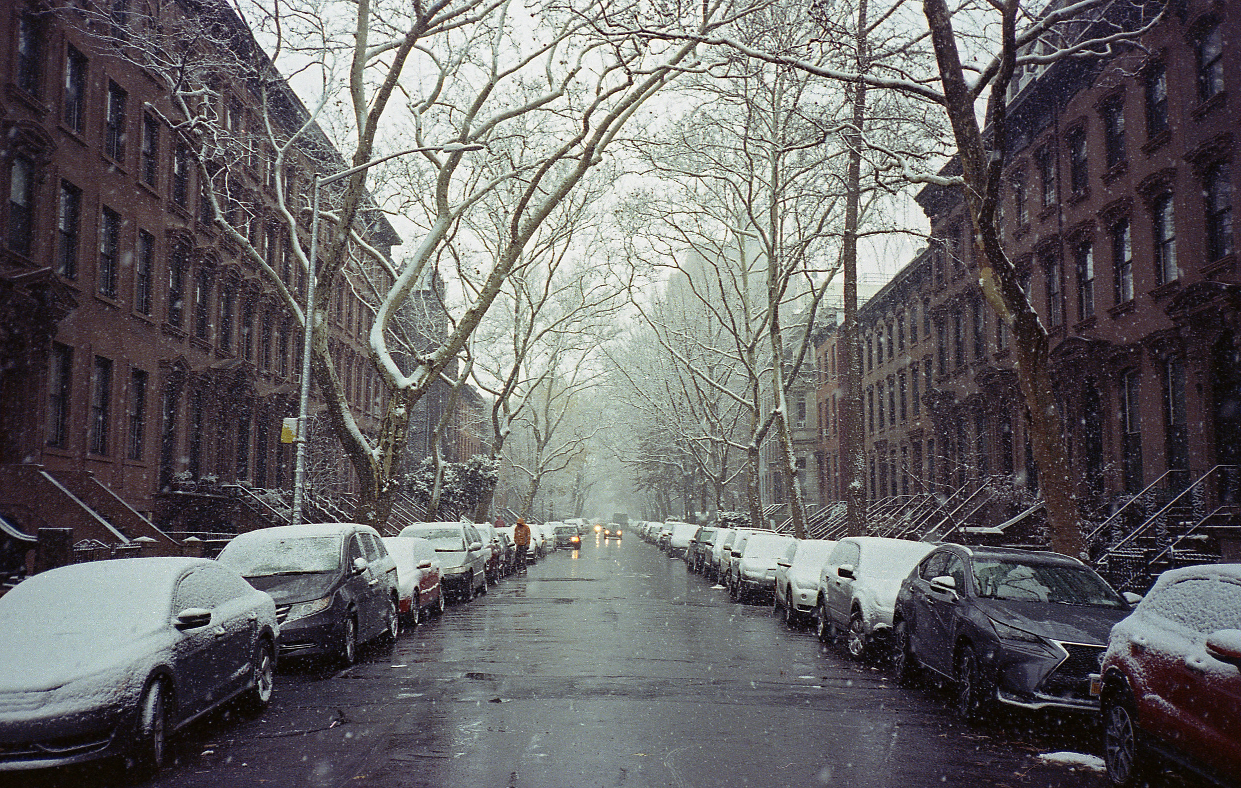 South Oxford St. on the first snow day of the year in NYC.