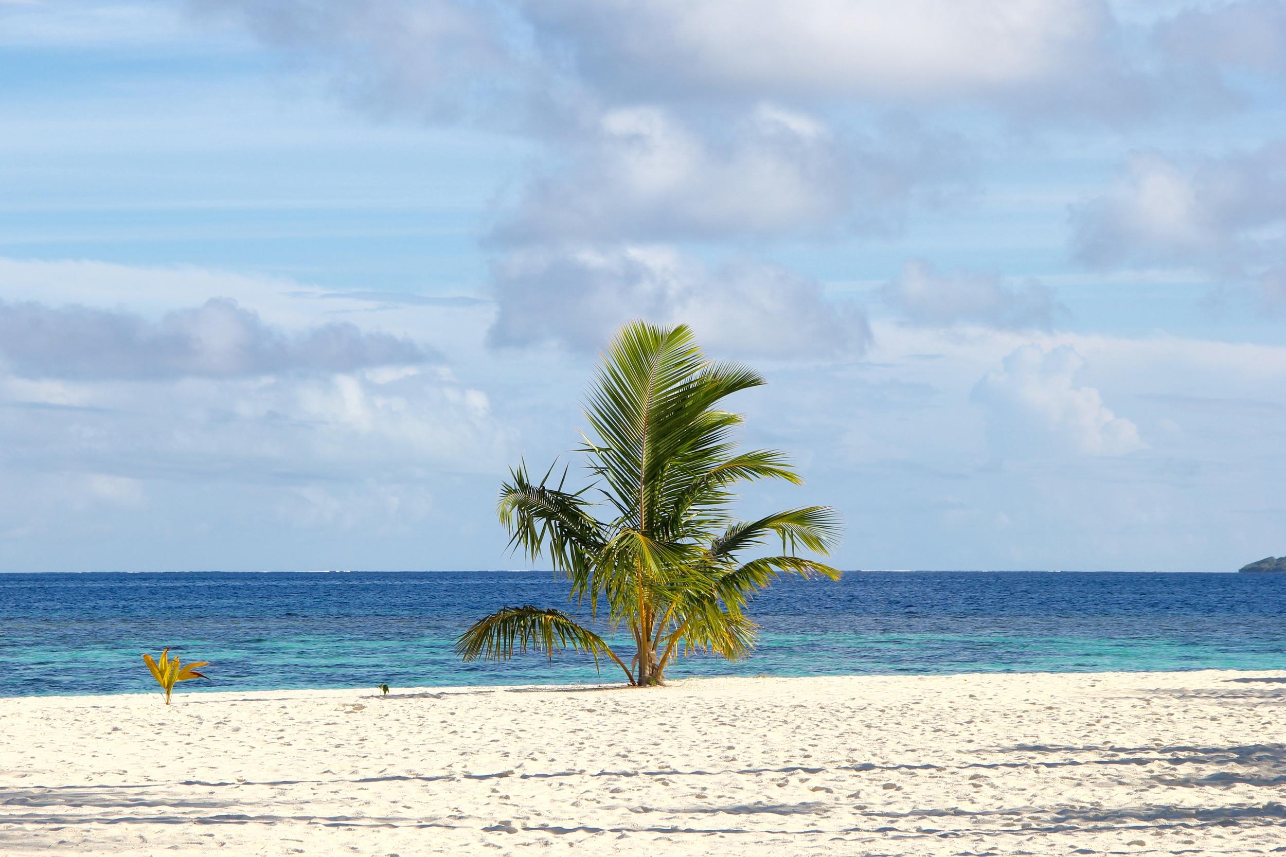 Beyond Ordinary Guides Maldives