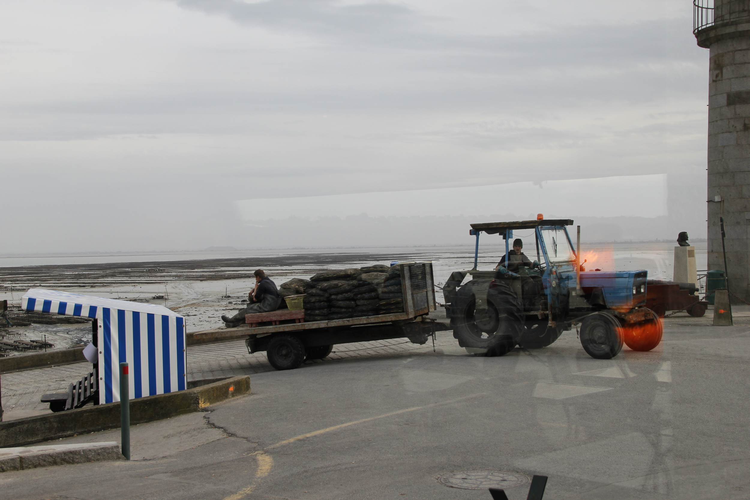 Bringing in the day's oysters via tractor | Cancale