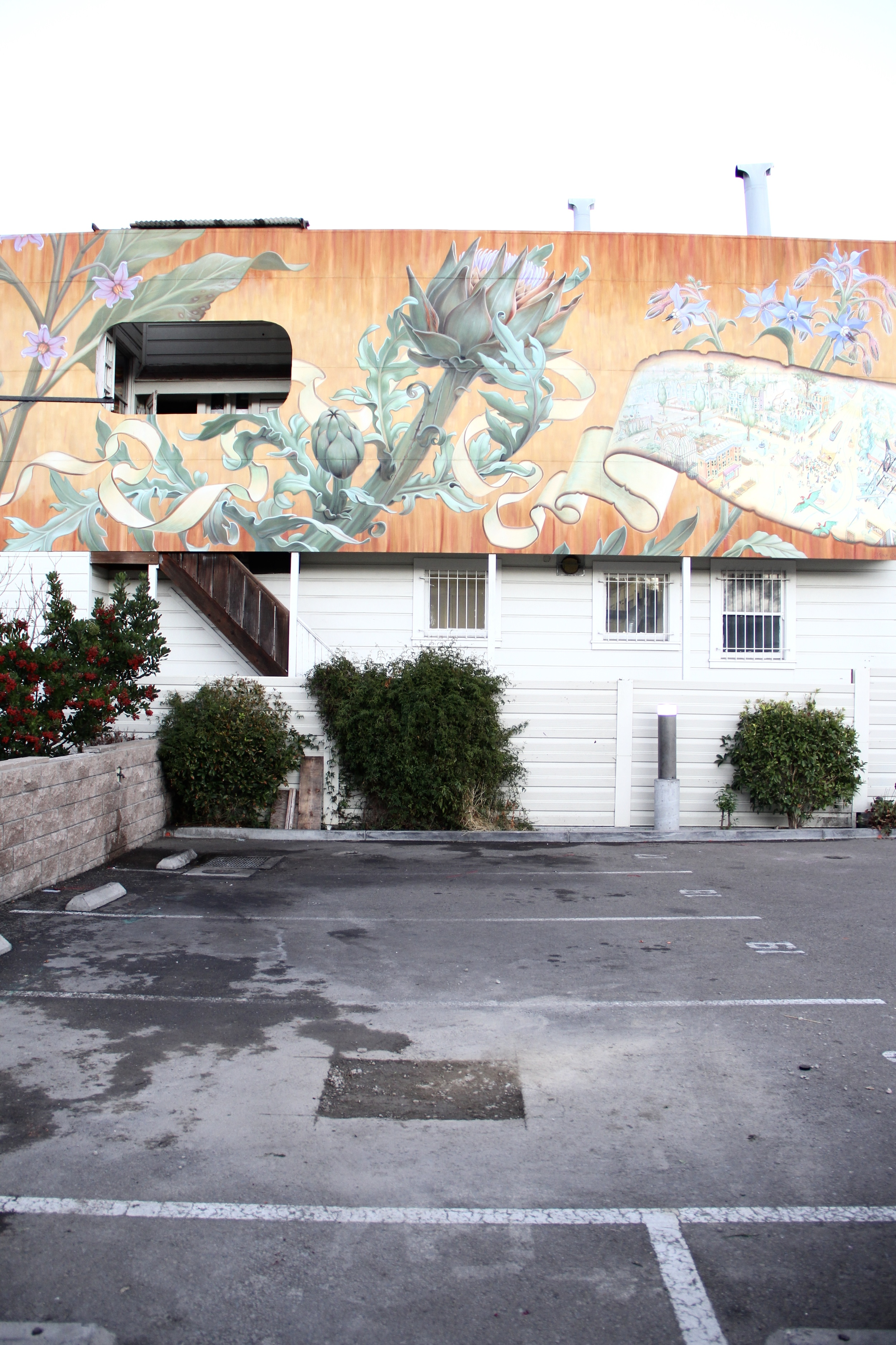 An empty parking lot achieves charm through a blooming artichoke | Beyond Ordinary Guides