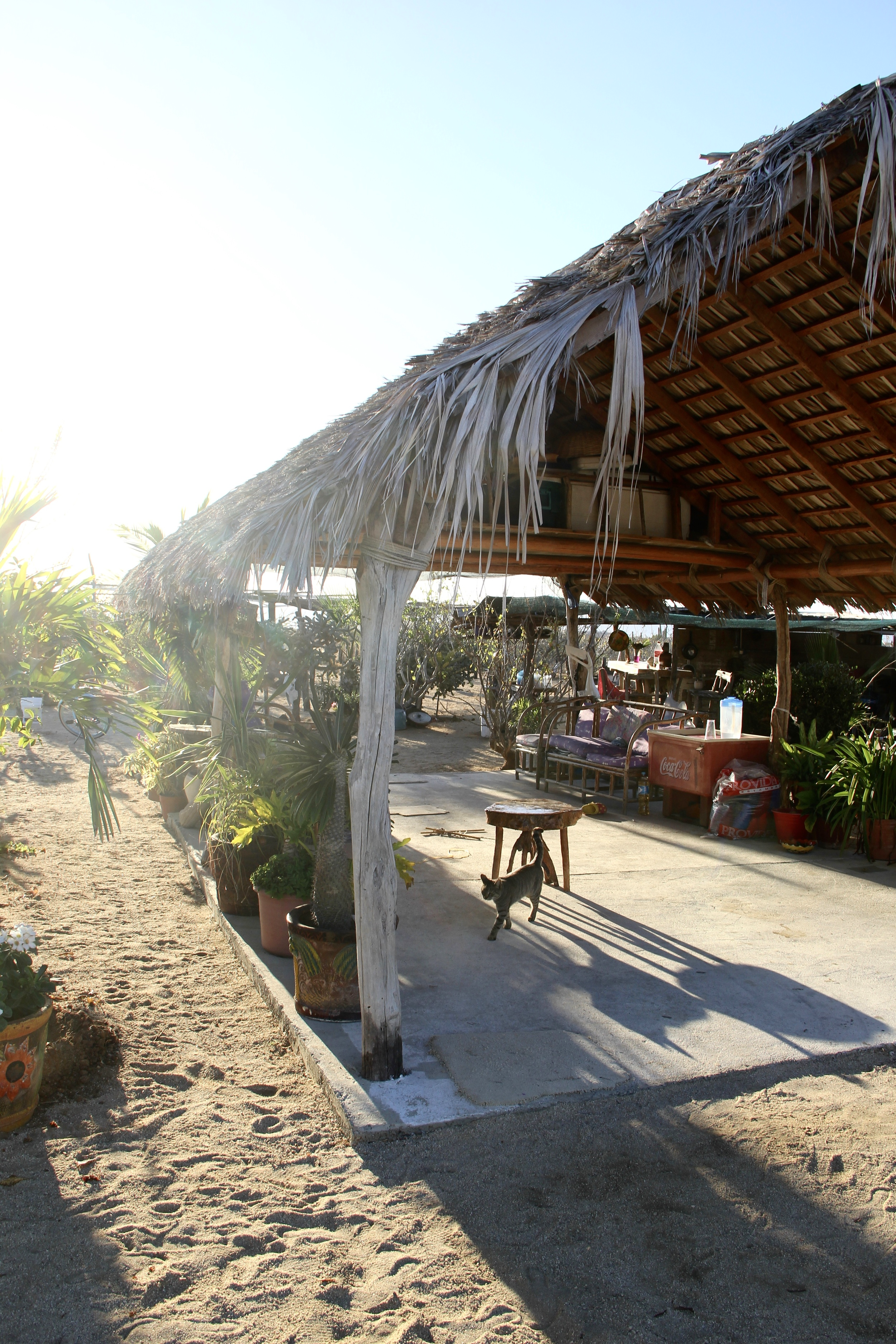 """The Blanket Factory 