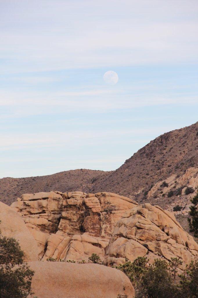 Moon Rise at Joshua Tree