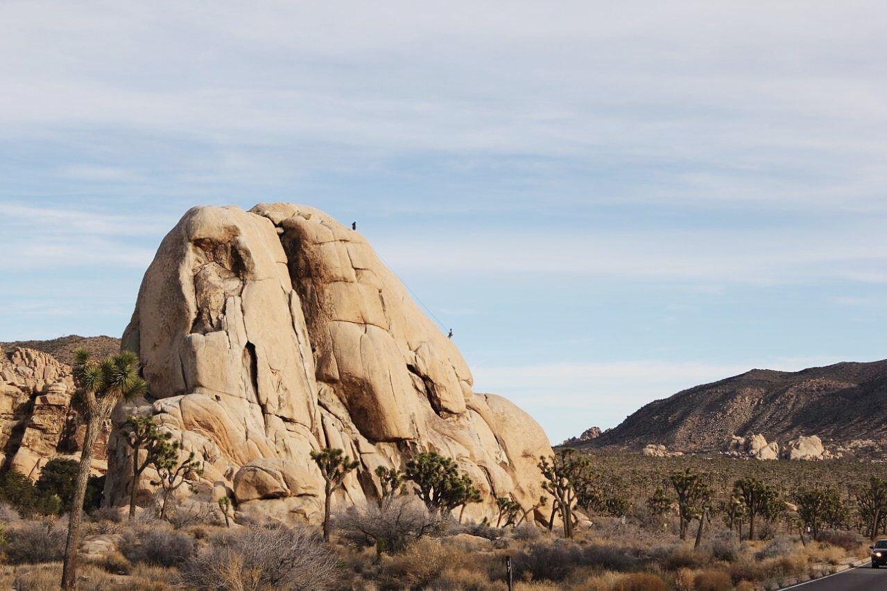 Climbers at Joshua Tree