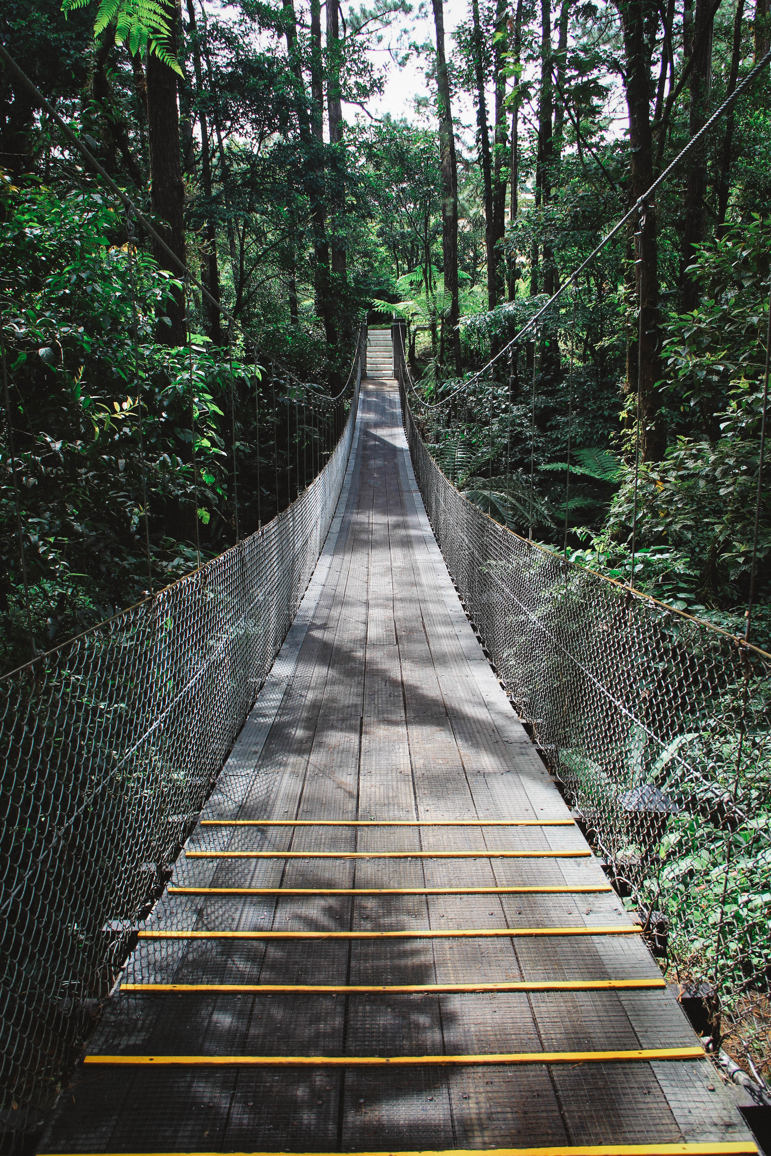 Hanging bridges are all over the the Arenal area. You can even visit a hanging bridge park! This one is on the Arenal Observatory Lodge & Spa property.