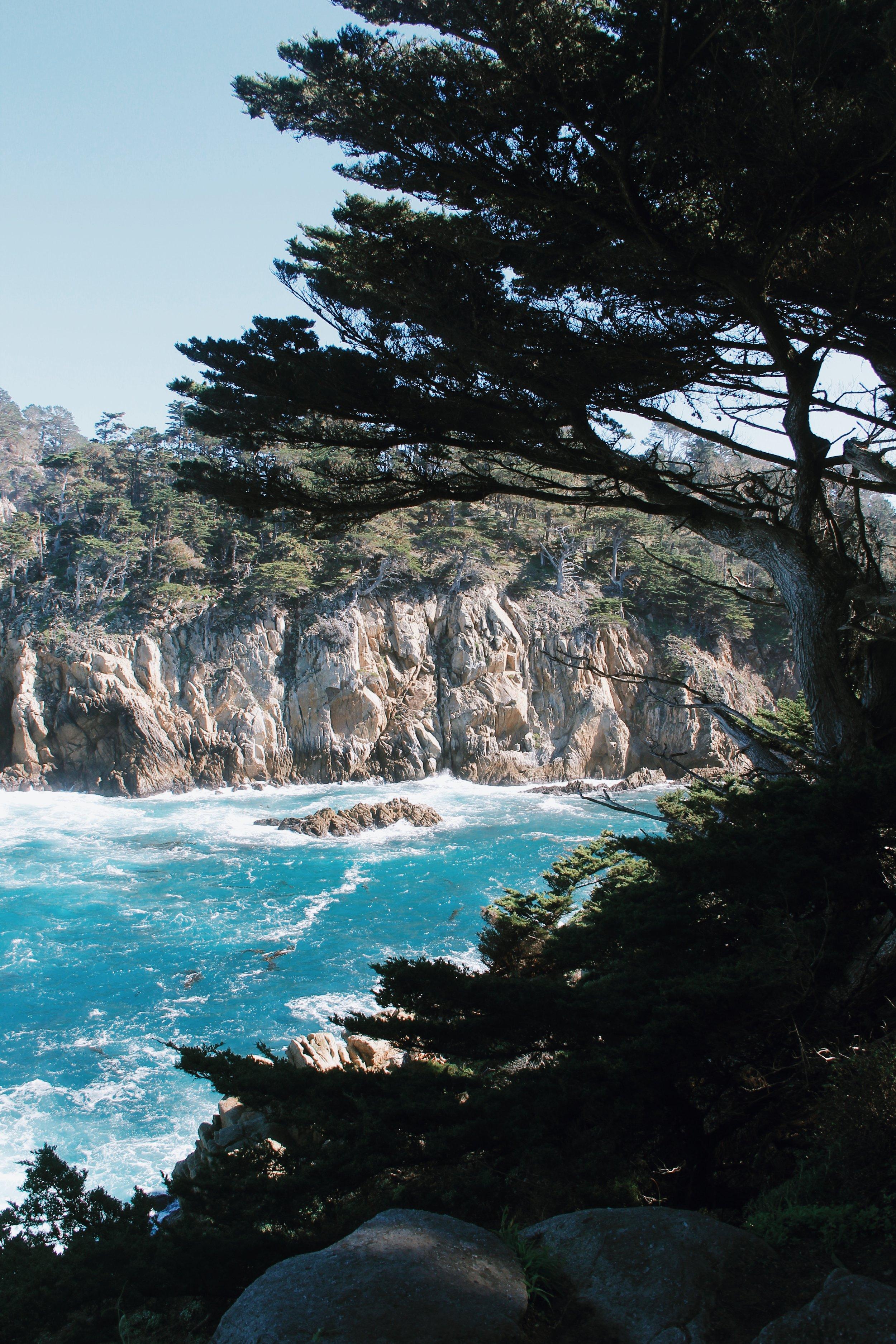 Point Lobos State Park via Beyond Ordinary Guides