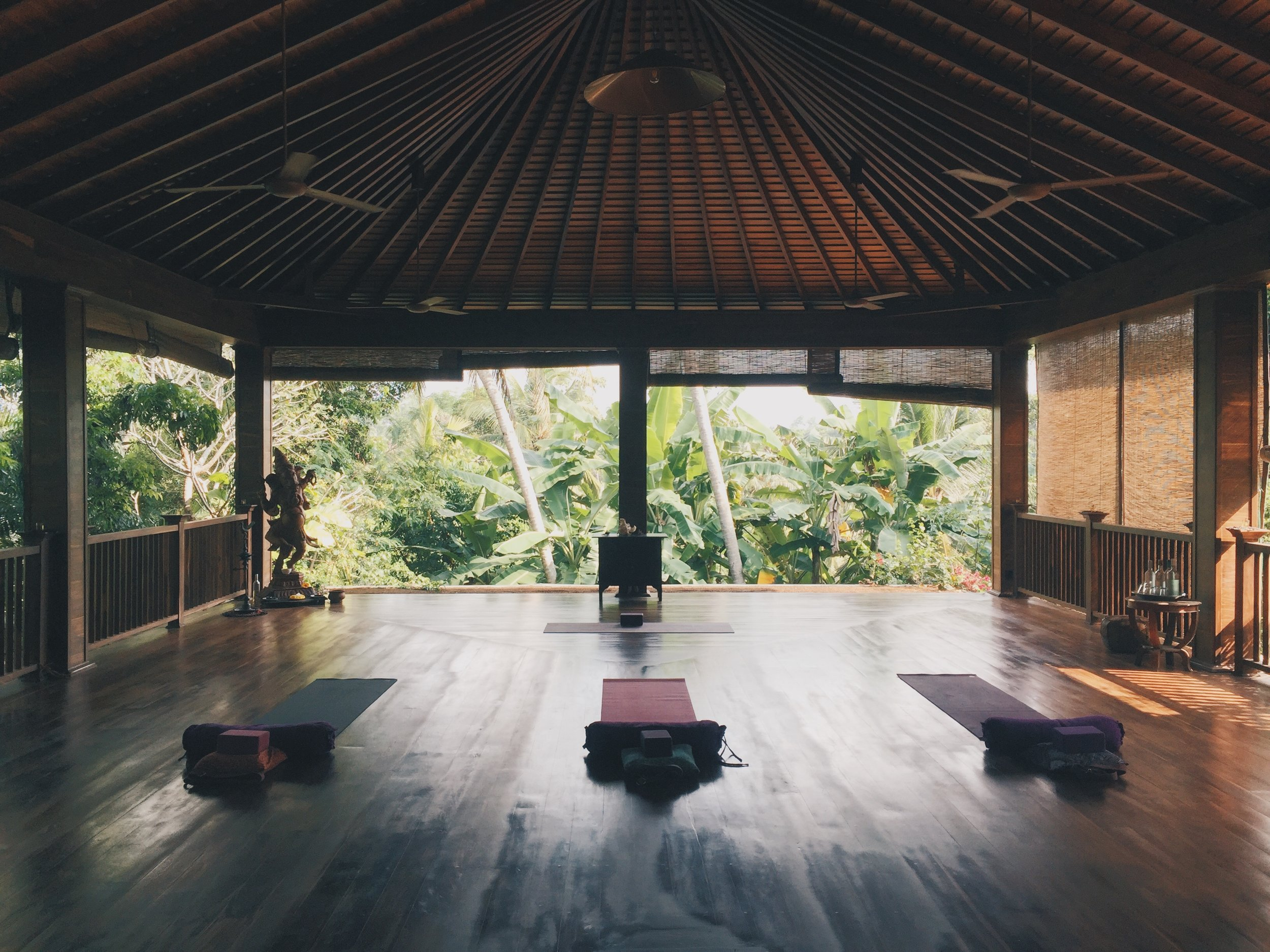Yoga at Sri |  Photo by Annie Lovell