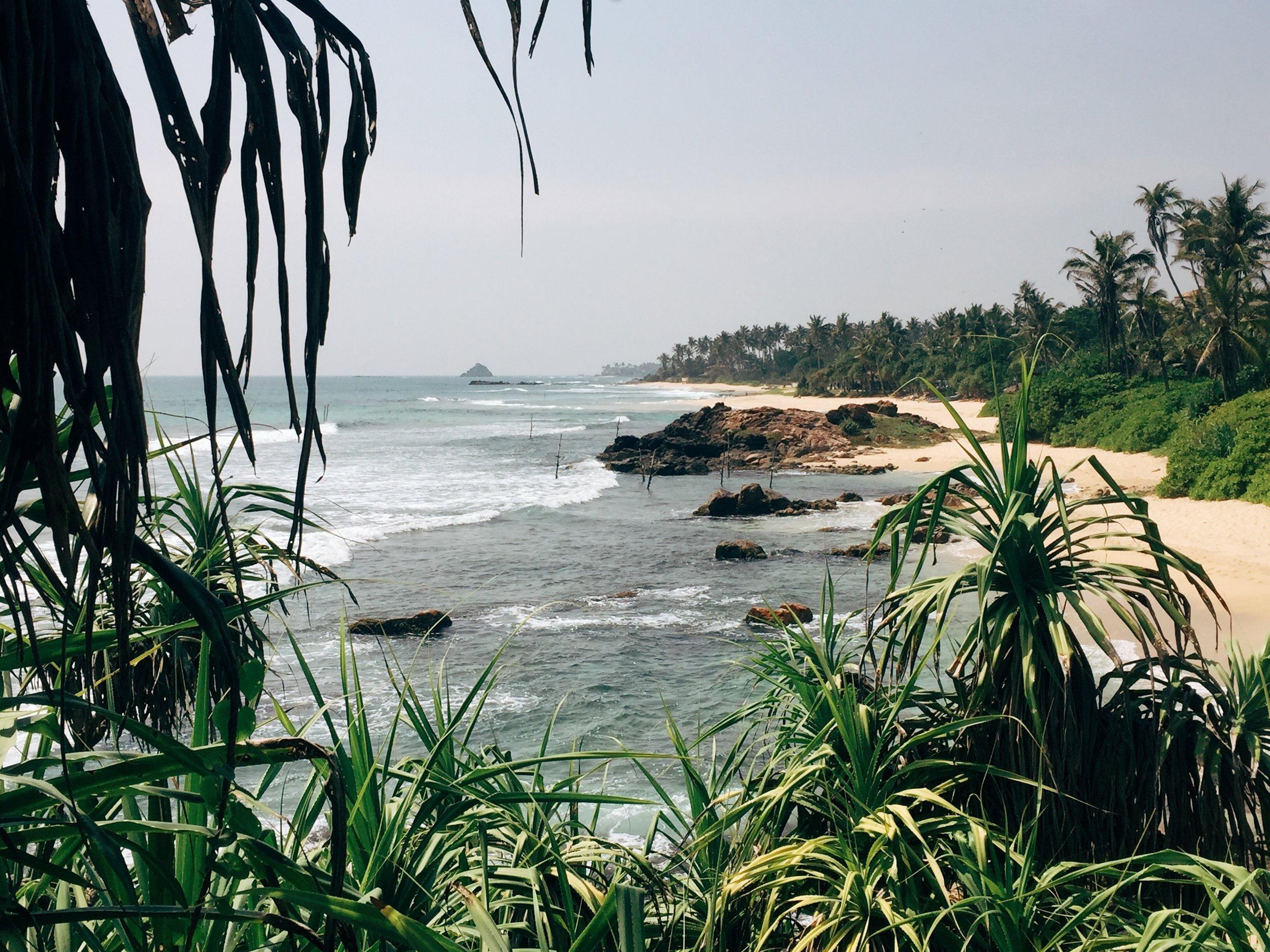 A Guide to Sri Lanka's South Coast