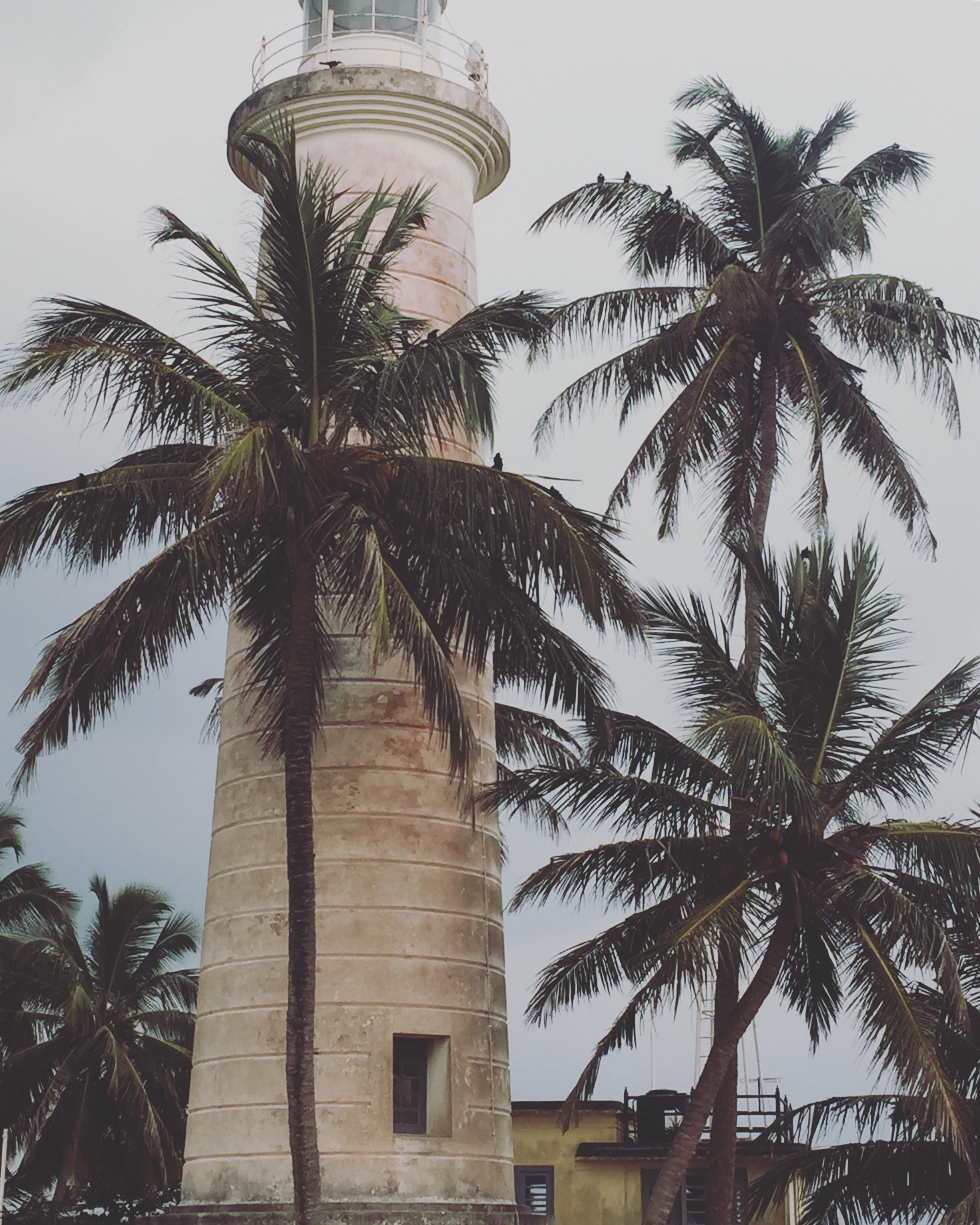 Sri Lanka South Coast-17.jpg