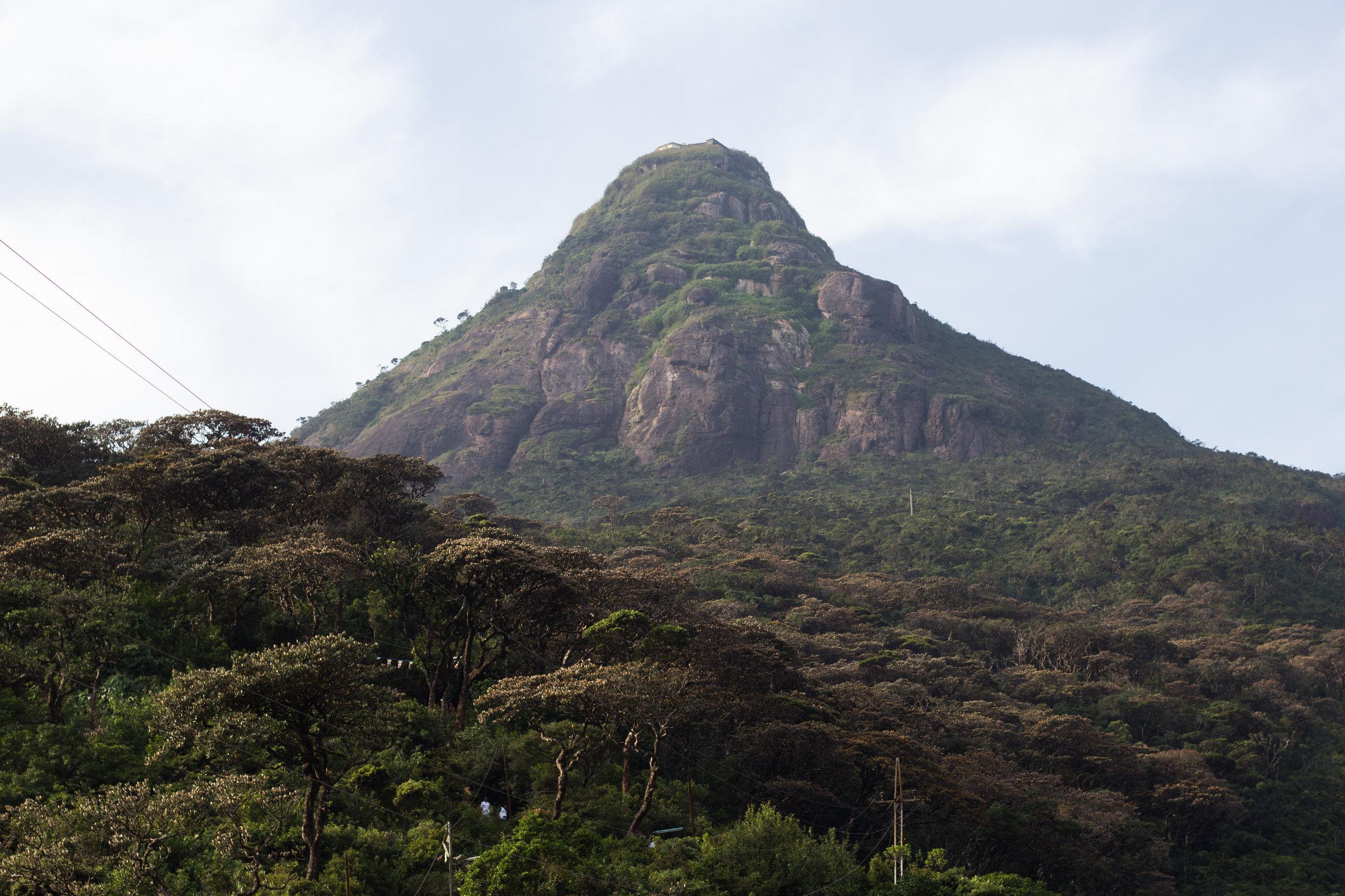 Sri Lanka Adam's Peak-19.jpg