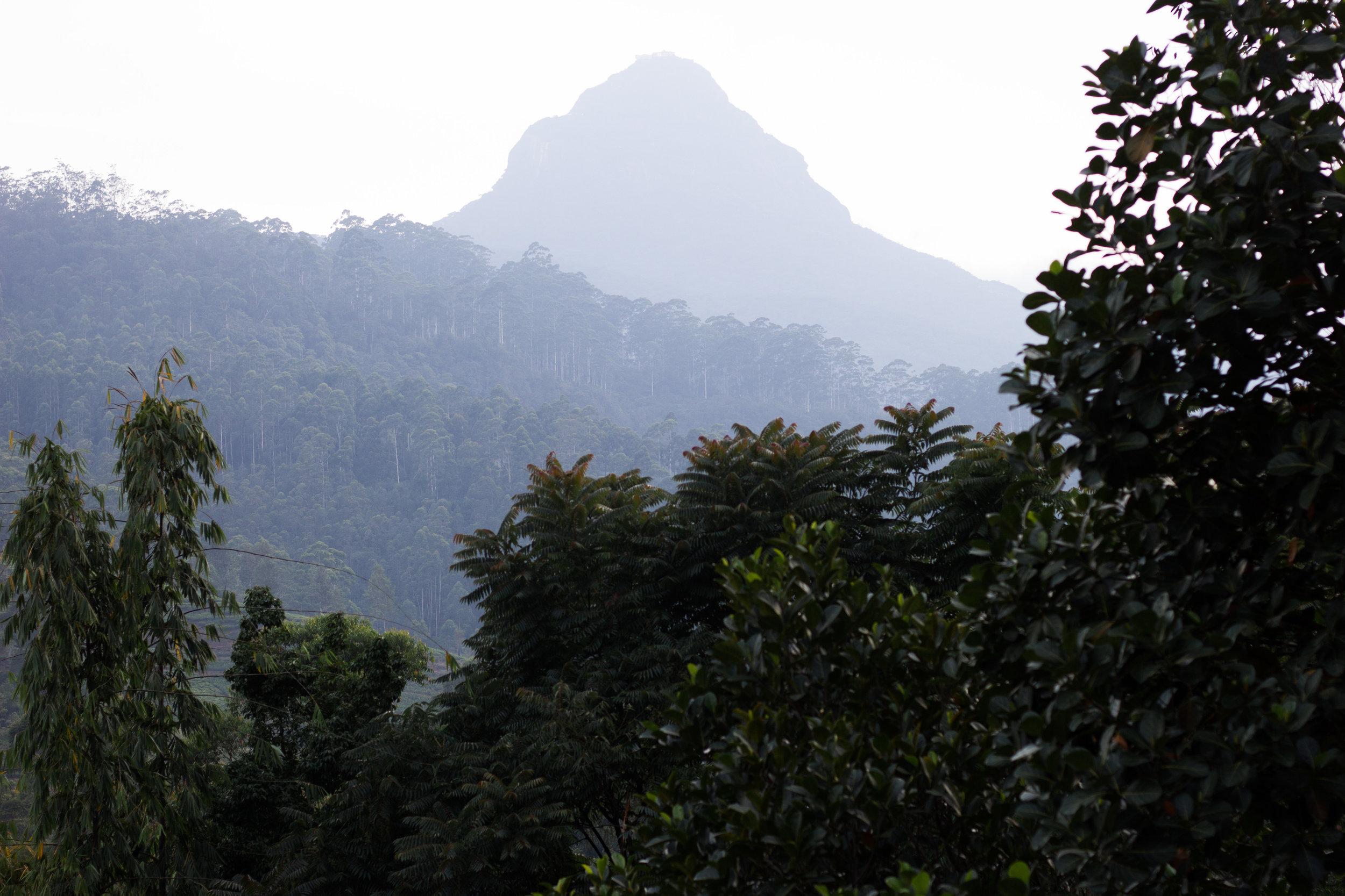 Sri Lanka Adam's Peak.jpg