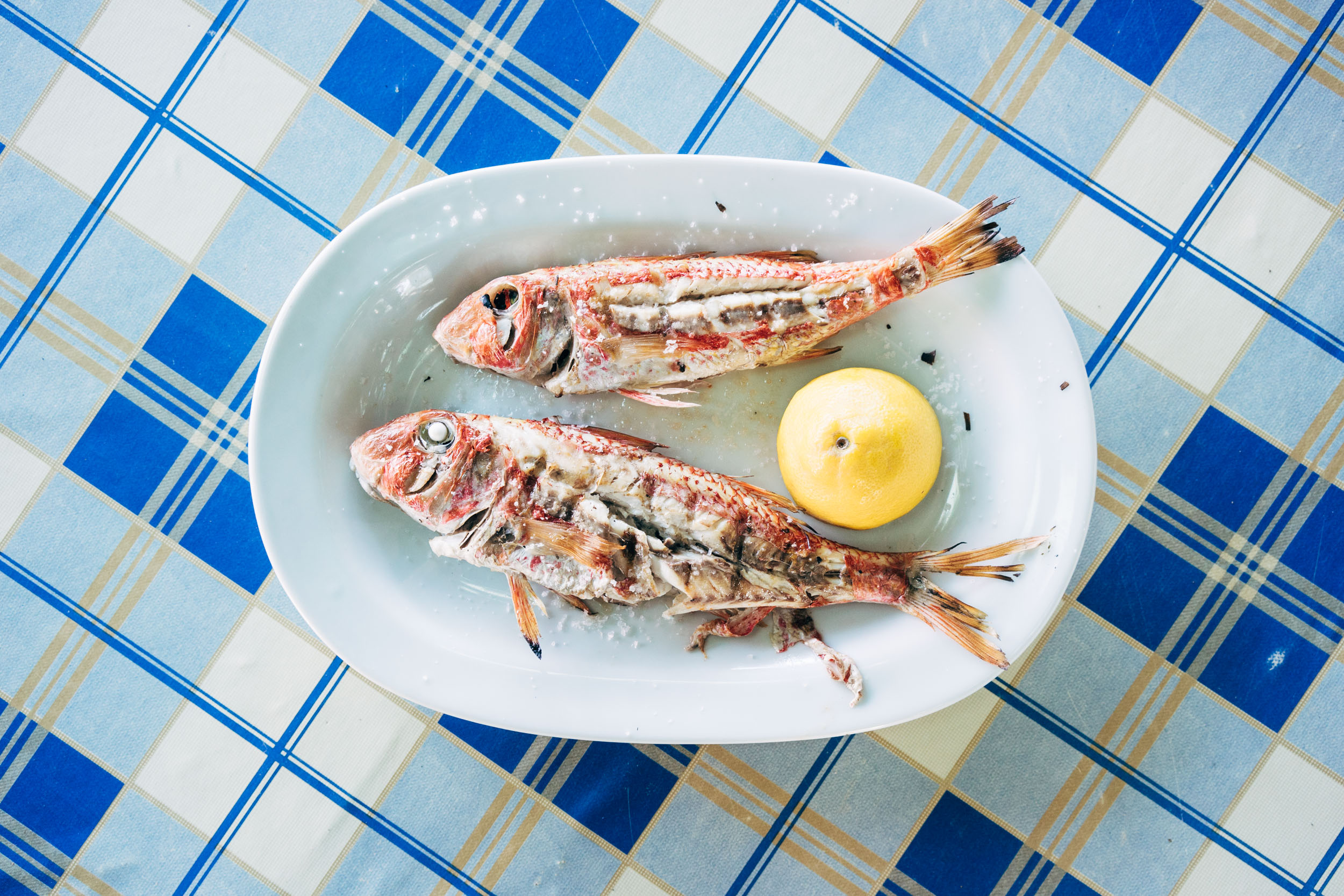 Fresh fish on the Greek Island of Koufonisia