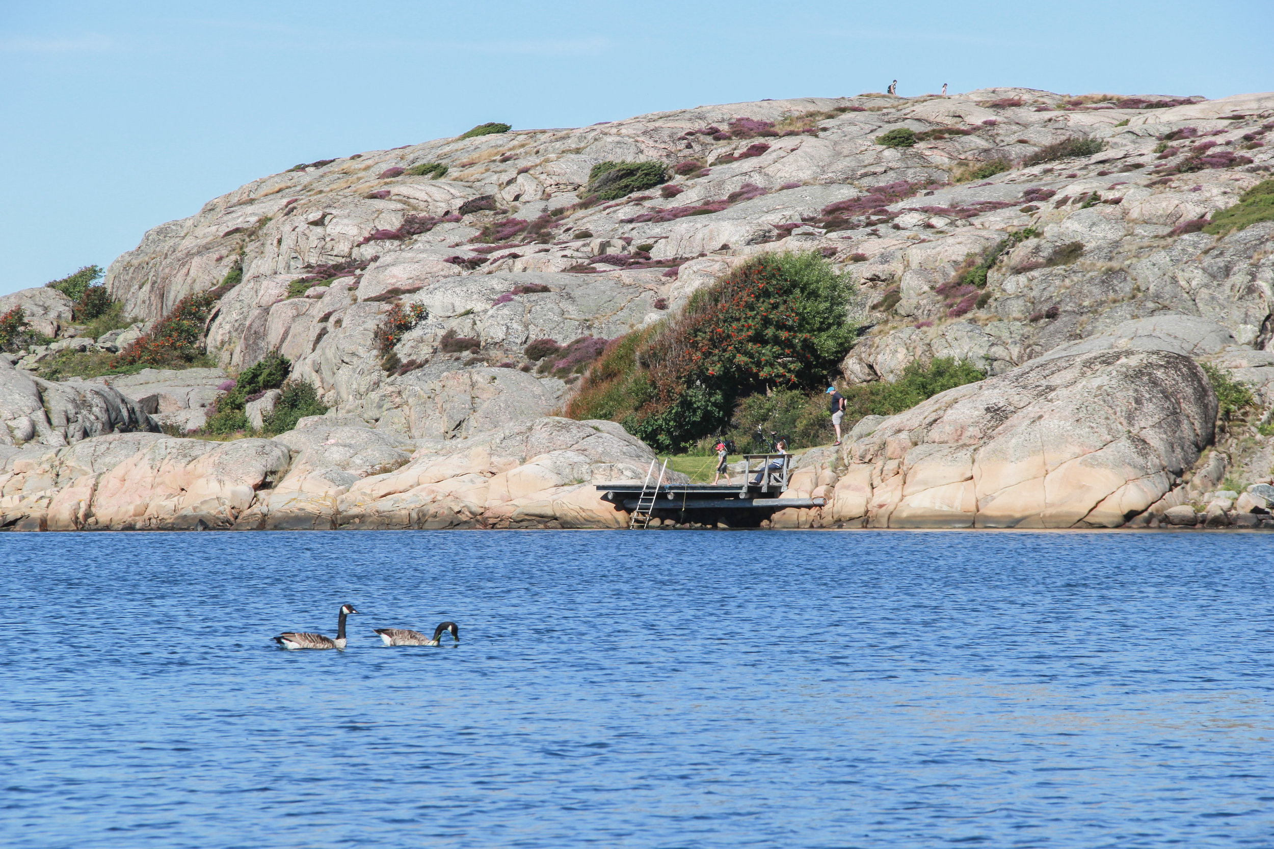 Bohulsan Coast Where the Swedes Summer-28.jpg