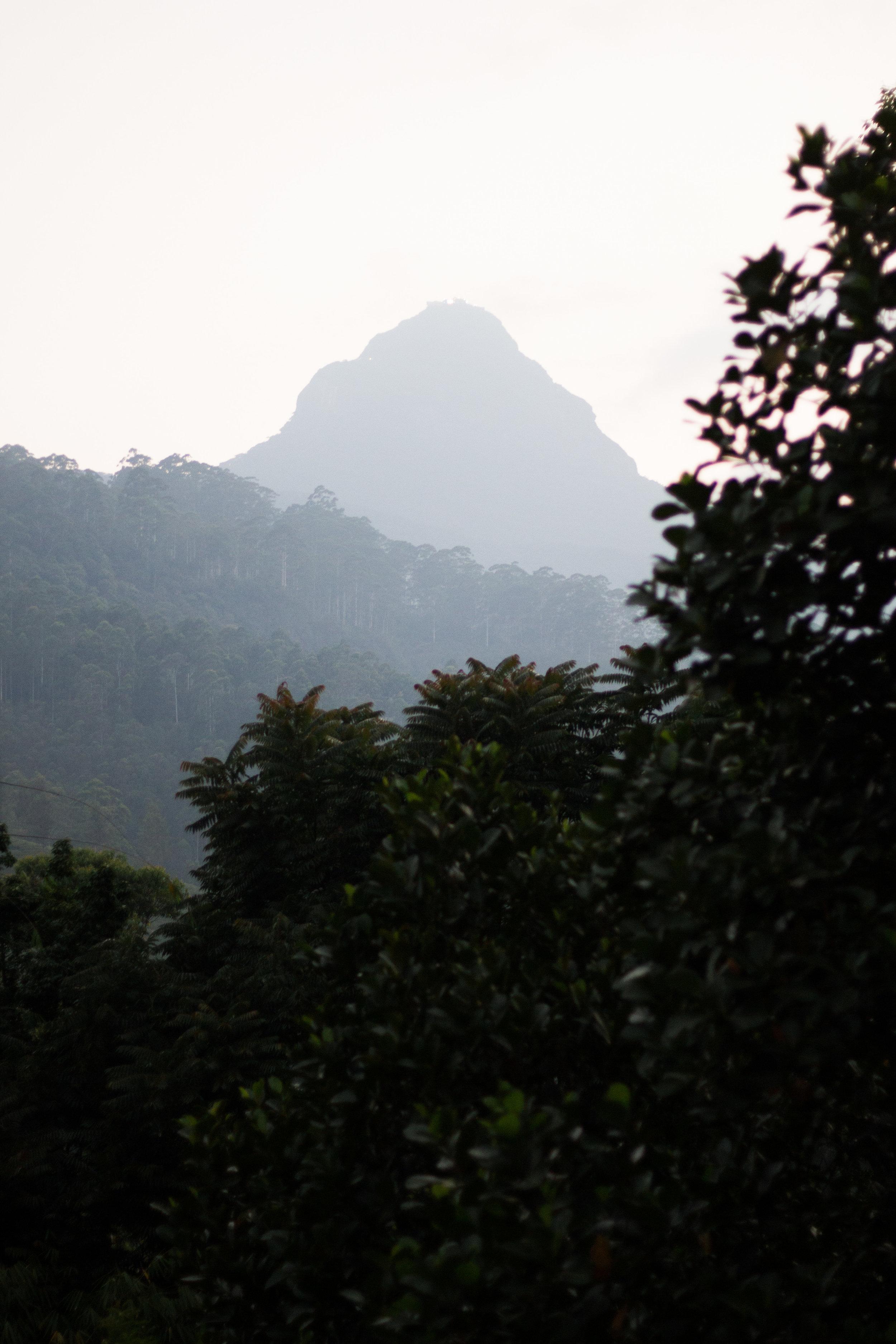 Sri Lanka Adam's Peak-6.jpg