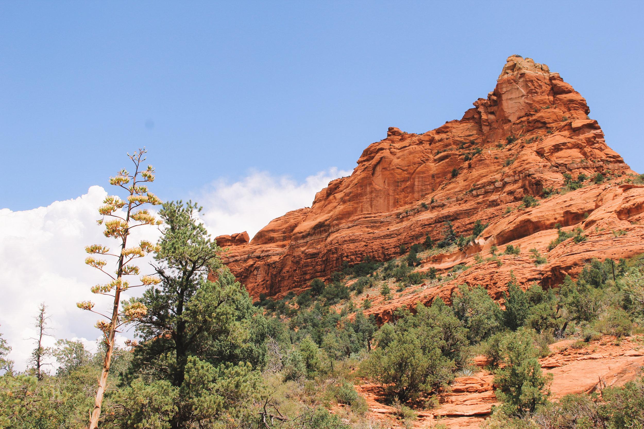 Beyond Ordinary Guides' Guide to Sedona, Arizona-53.jpg