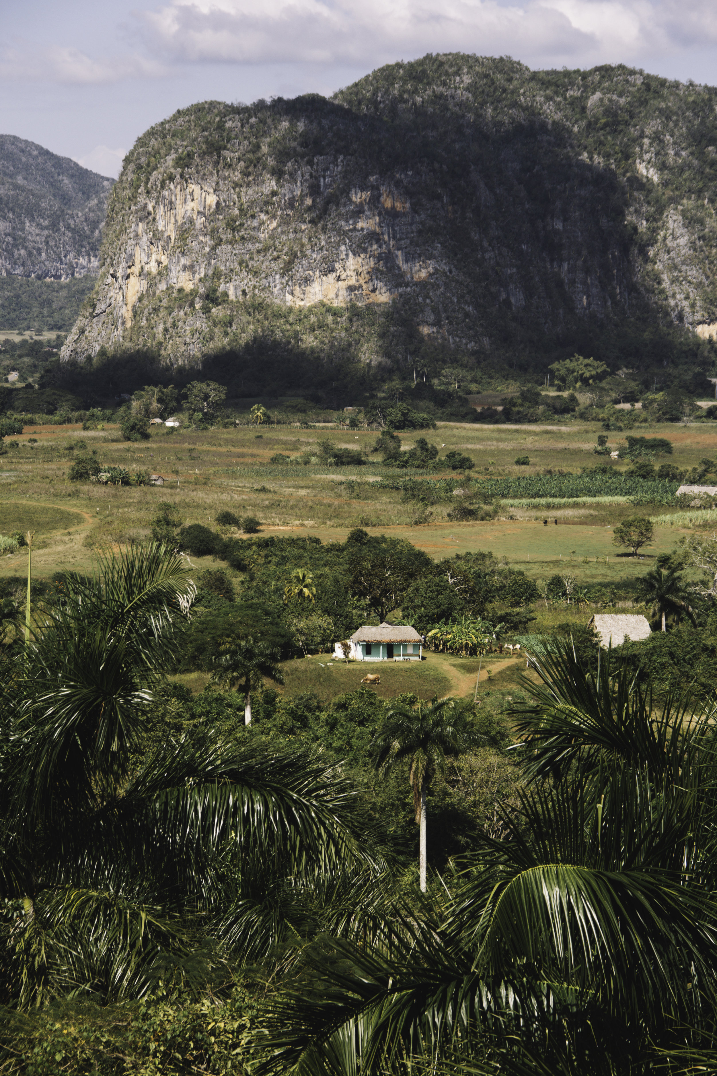 Our Favorite Day in Cuba | Horseback Riding in Vinales, Cuba | Beyond Ordinary Guides-13.jpg