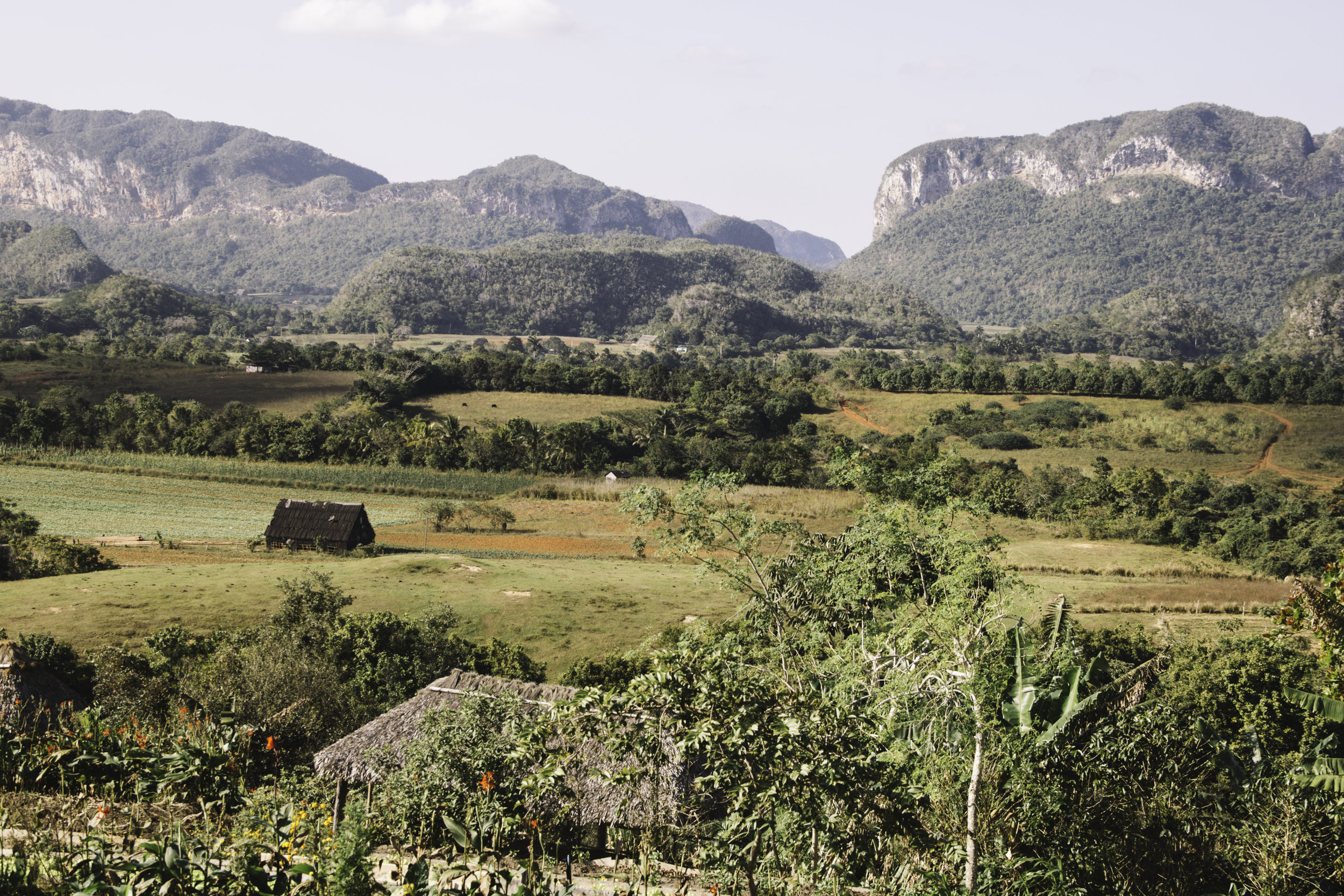 Our Favorite Day in Cuba | Horseback Riding in Vinales, Cuba | Beyond Ordinary Guides-59.jpg