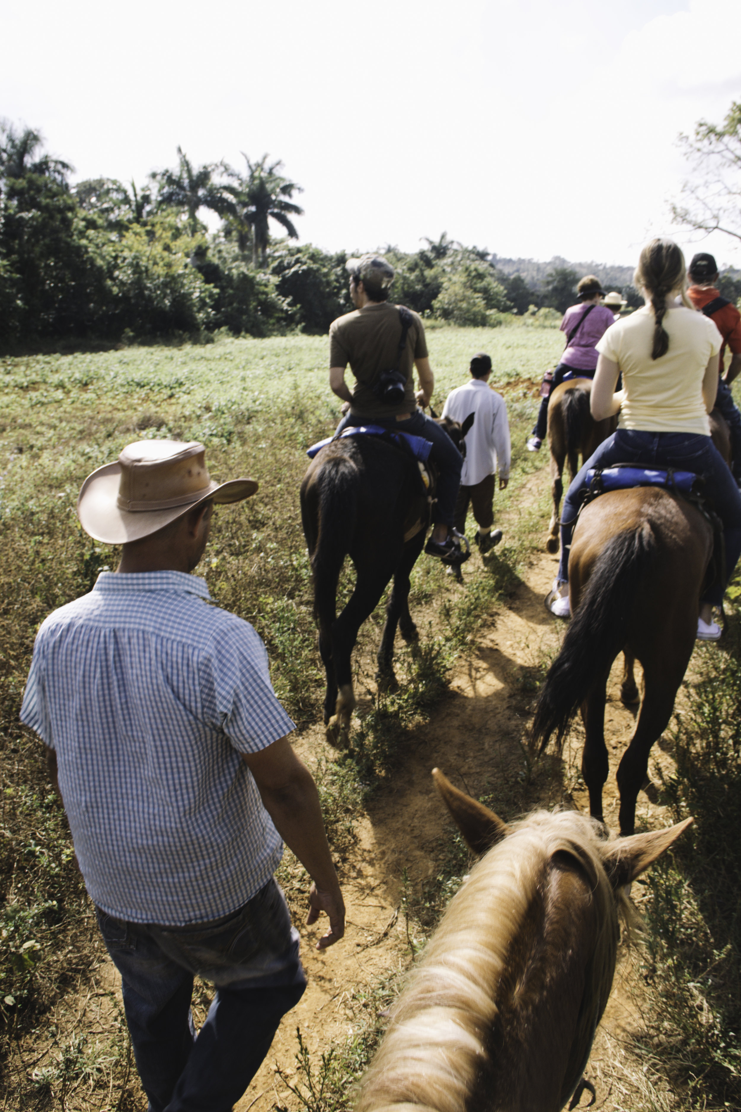 Our Favorite Day In Cuba Horseback Riding In Vinales Beyond Ordinary Guides Curated Travel Guides Authentic Stores For The Aesthetic Minded Traveler