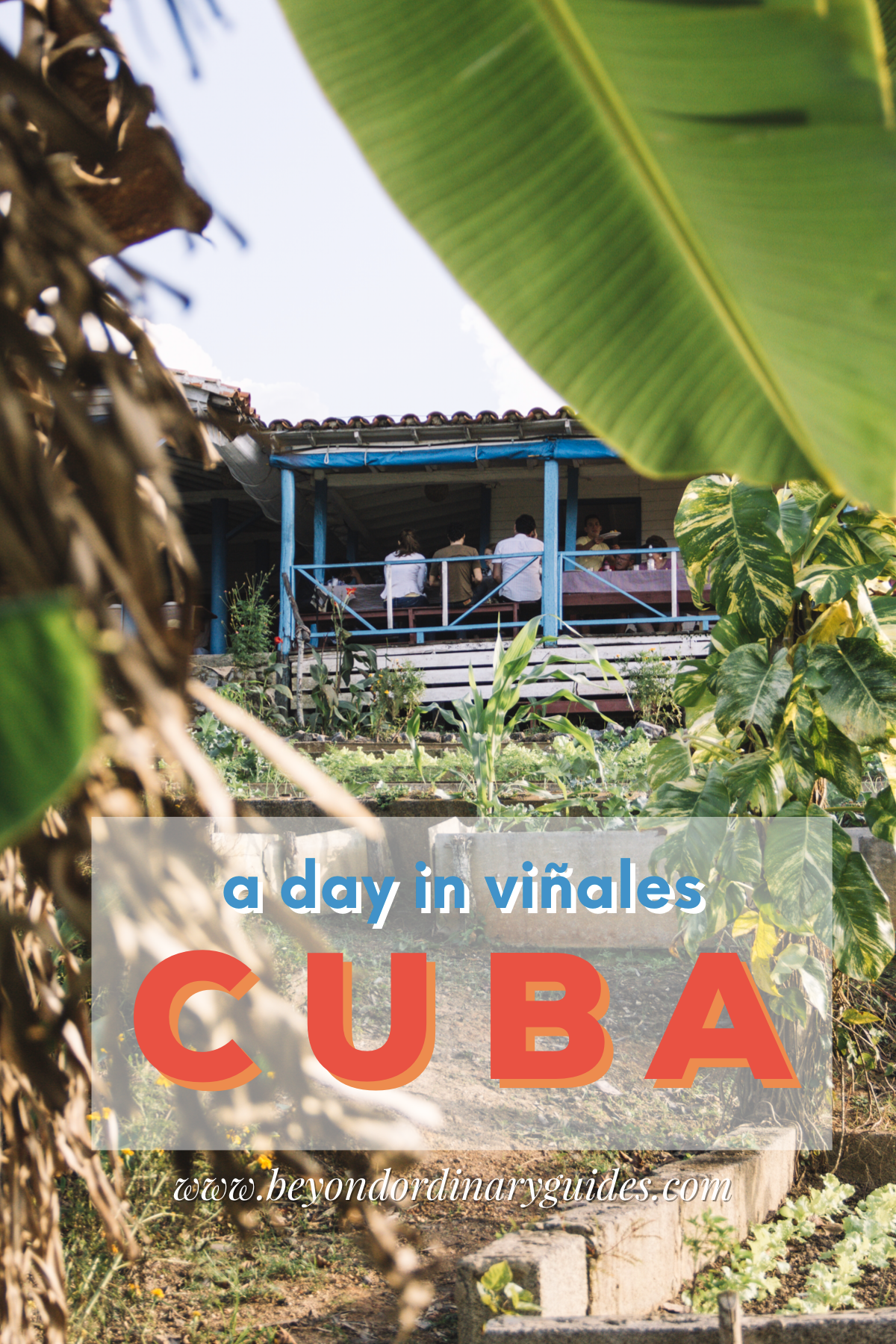 A Day in Vinales Cuba with Coast to Costa | Beyond Ordinary Guides
