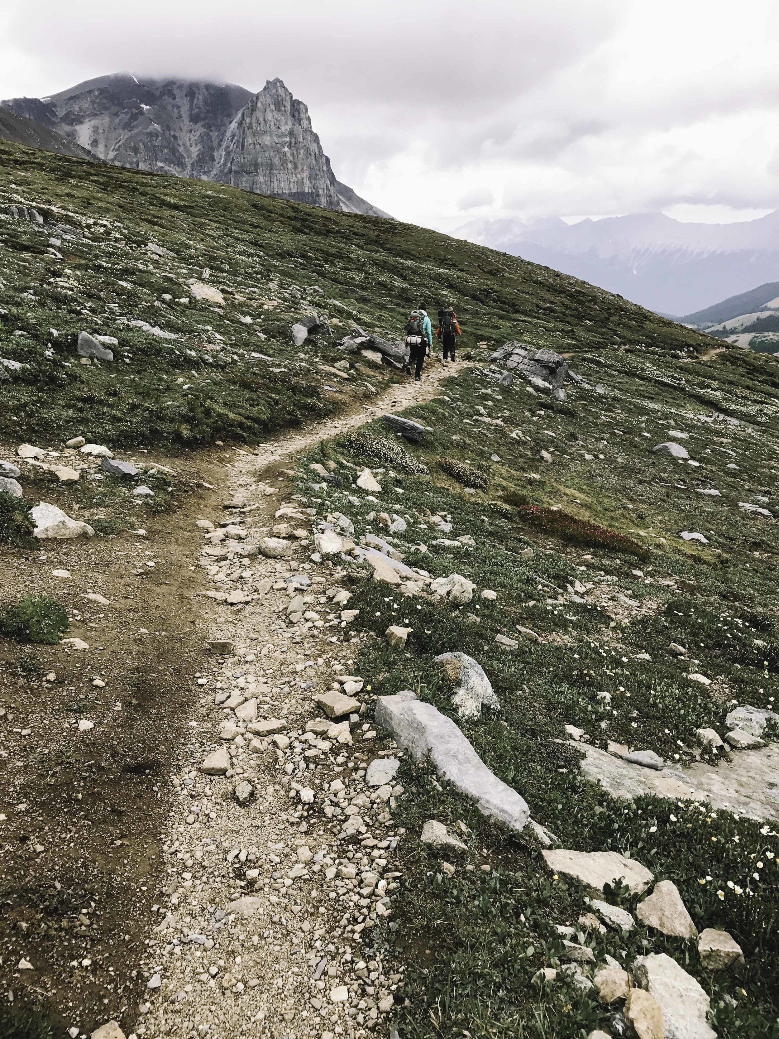 Hiking the Skyline Trail | Beyond Ordinary Guides-50.jpg