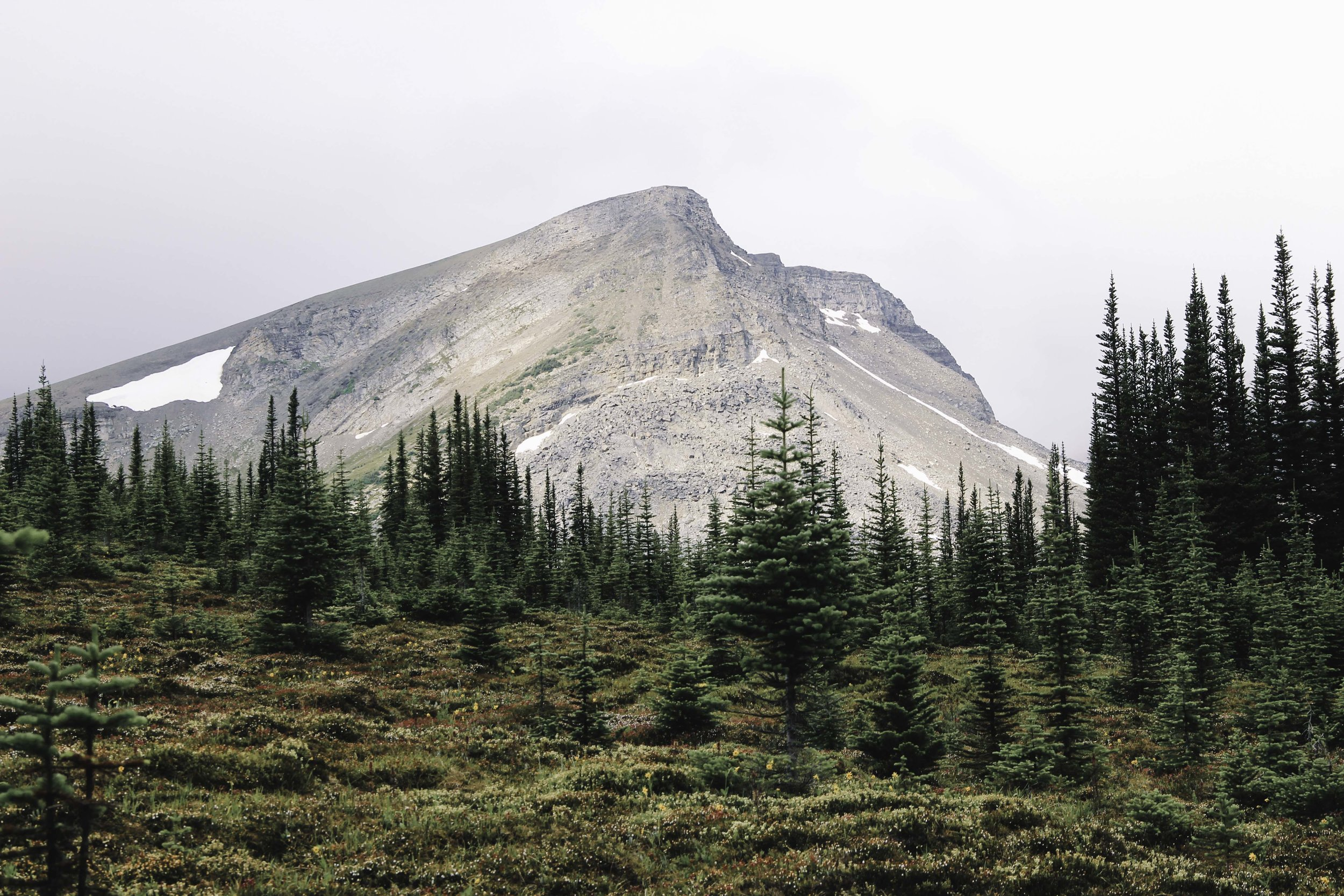 Hiking the Skyline Trail | Beyond Ordinary Guides-63.jpg