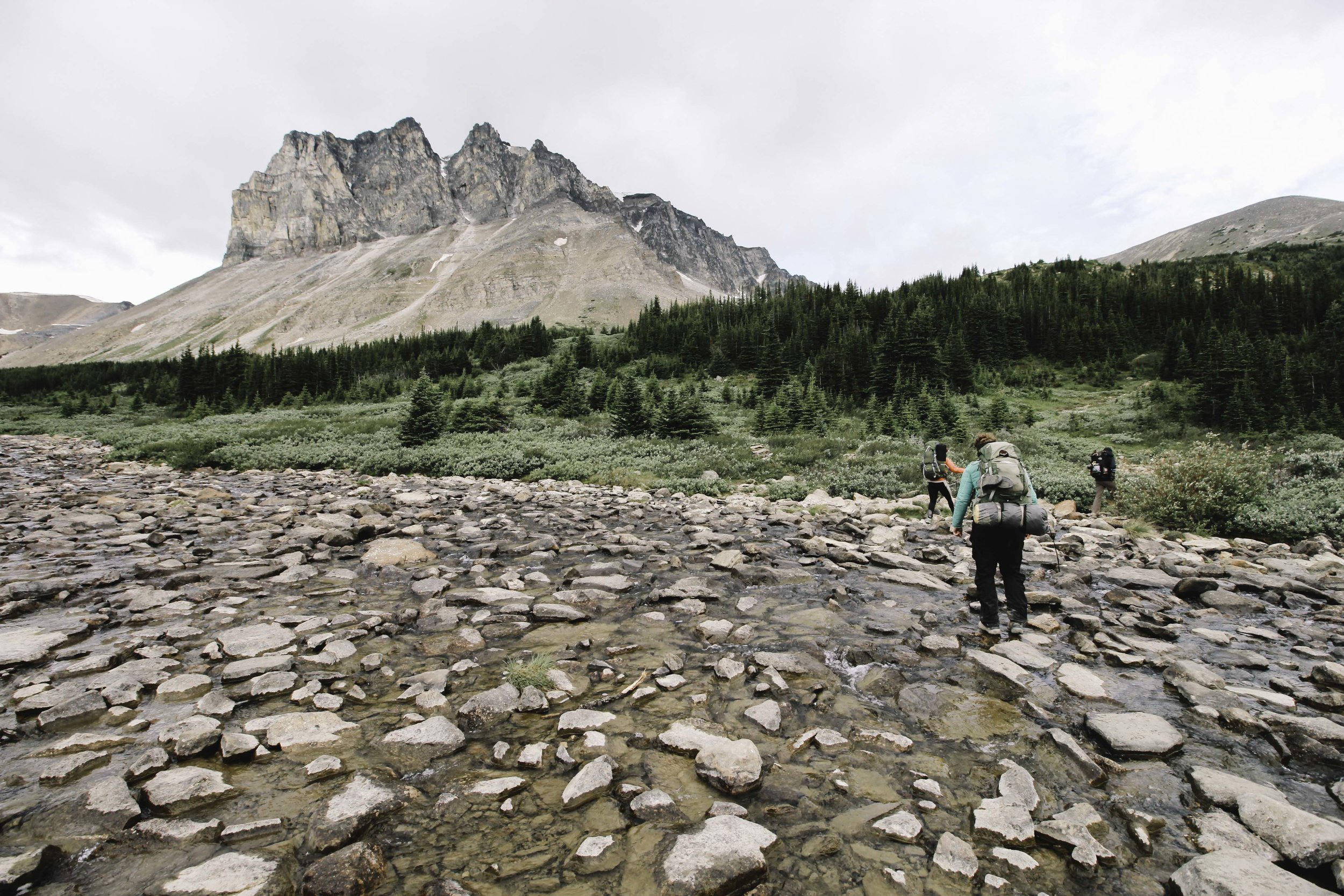 Hiking the Skyline Trail | Beyond Ordinary Guides-106.jpg