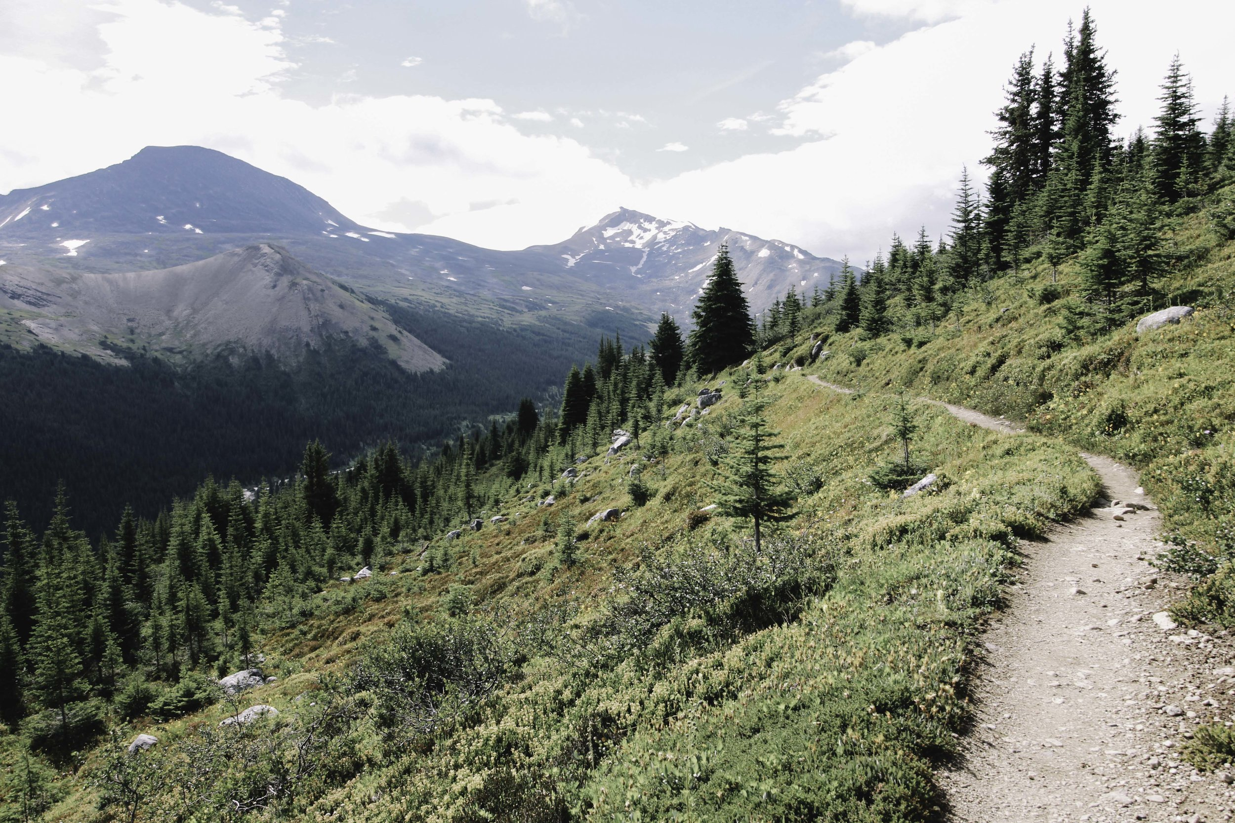 Hiking the Skyline Trail | Beyond Ordinary Guides-110.jpg