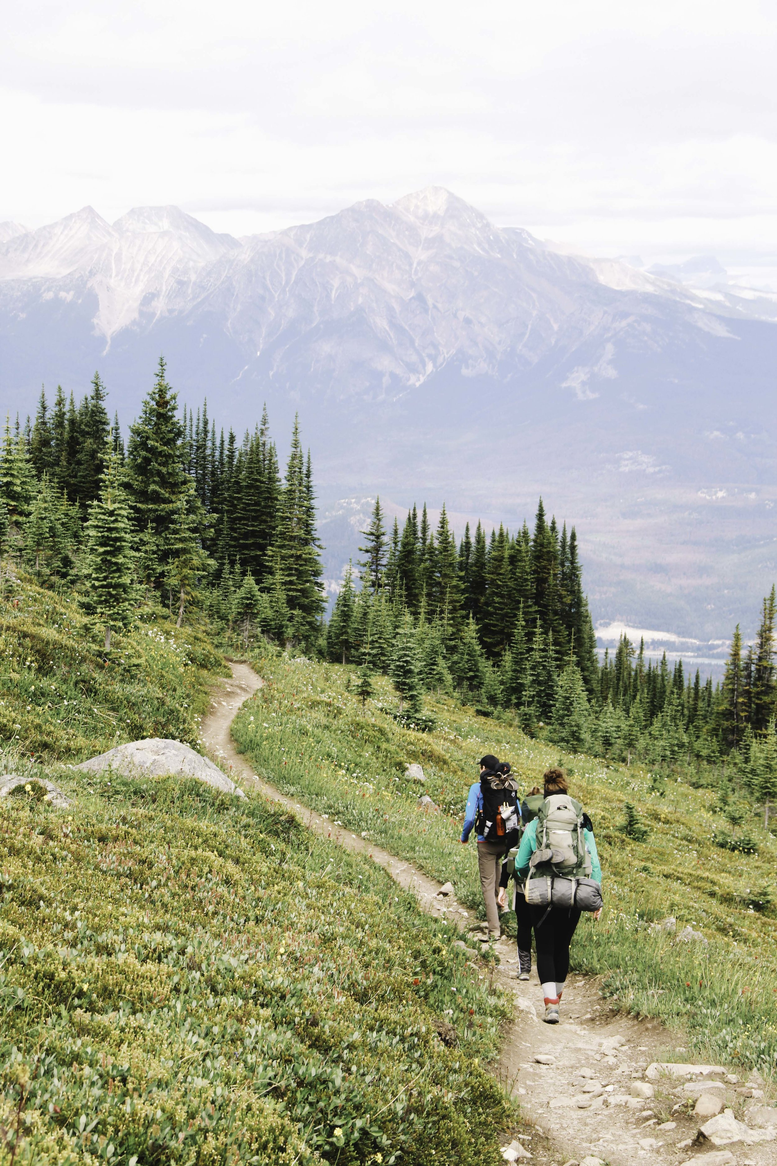 Hiking the Skyline Trail | Beyond Ordinary Guides-122.jpg