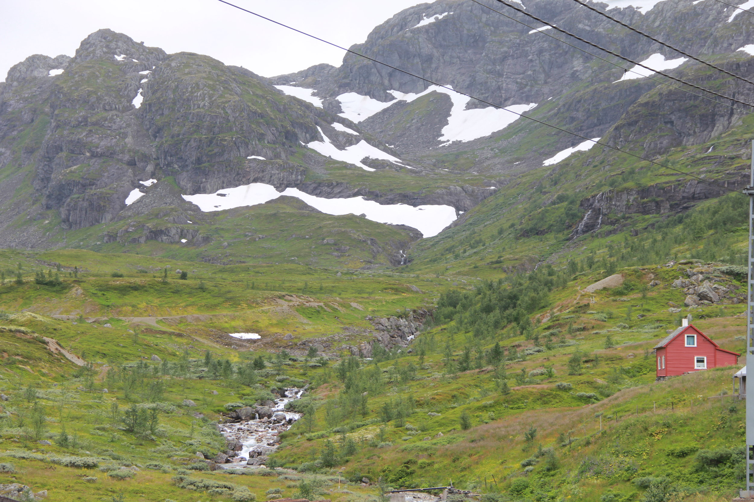 View from the train from Myrdal to Flam