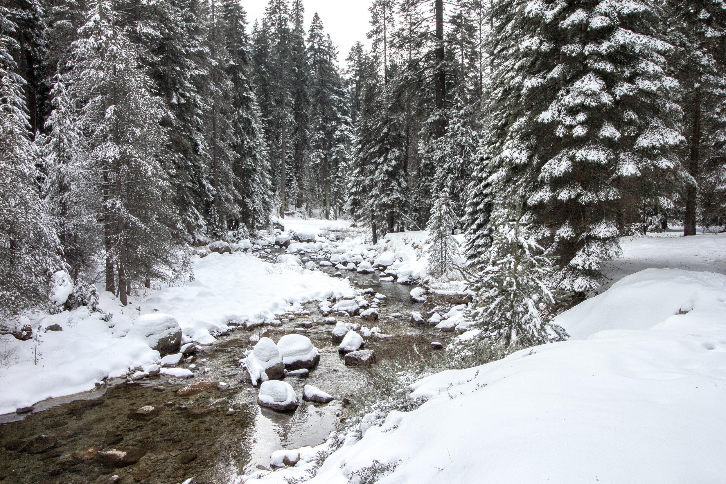 Tokopah Falls Trail in Winter   Sequoia National Park