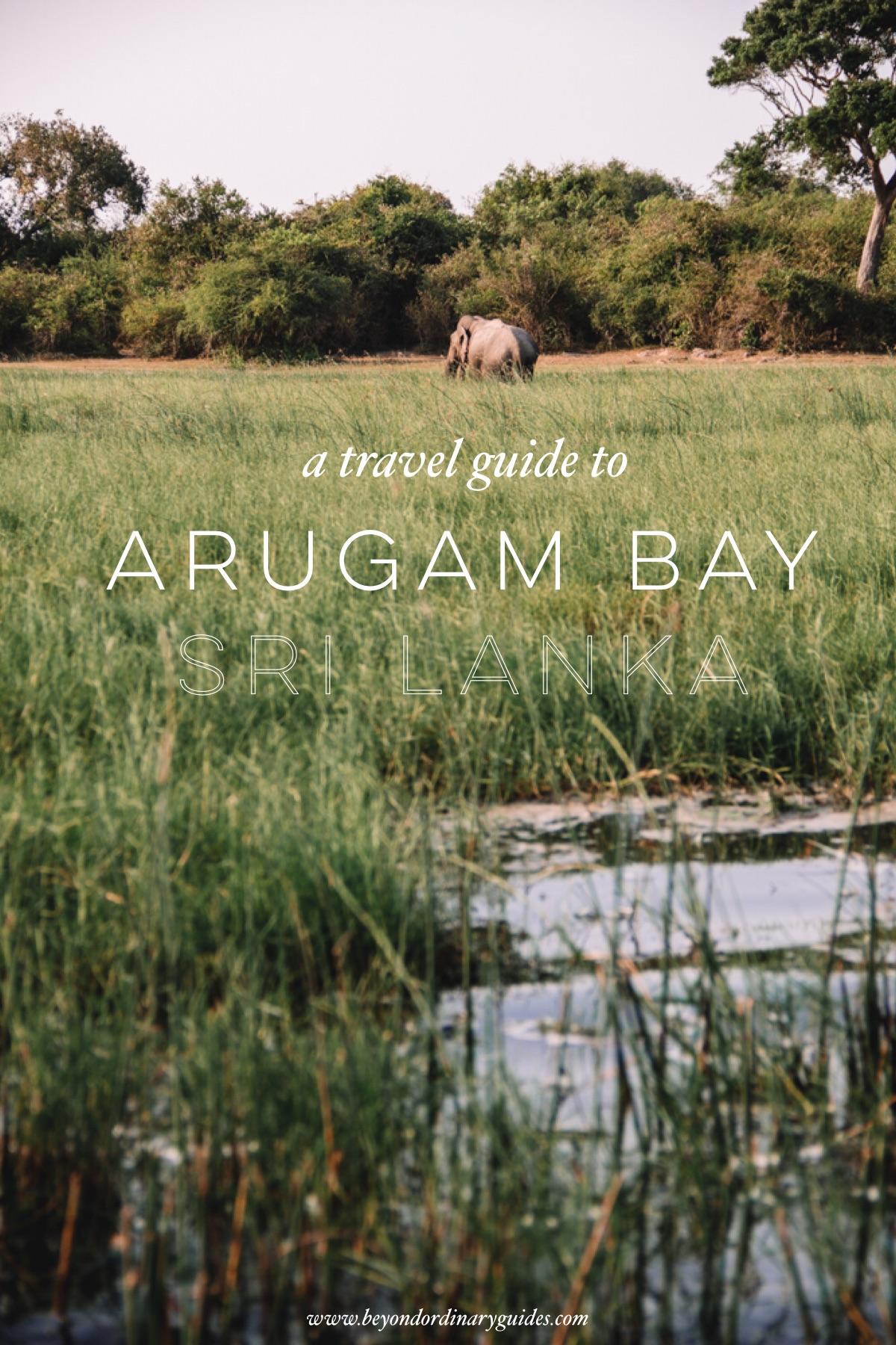 Travel Guide to Arugam Bay, Sri Lanka.jpg