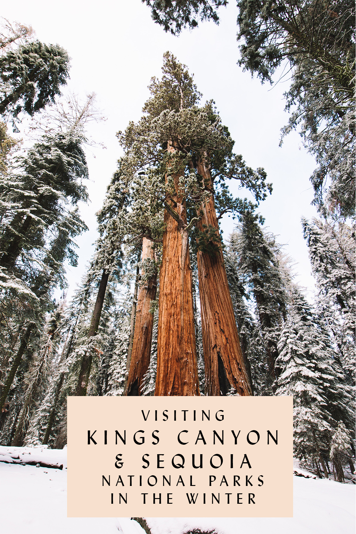 Visiting Kings Canyon and Sequoia National Parks in the Winter