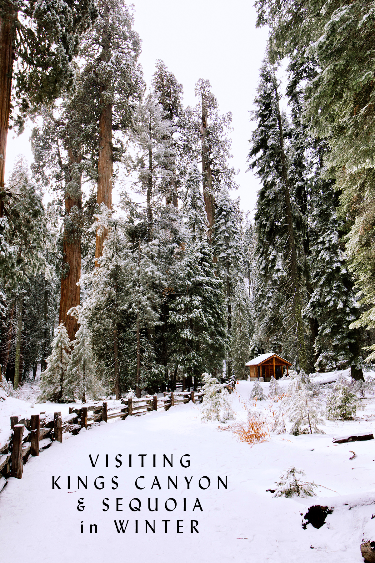 Visiting Kings Canyon and Sequoia in Winter.jpg