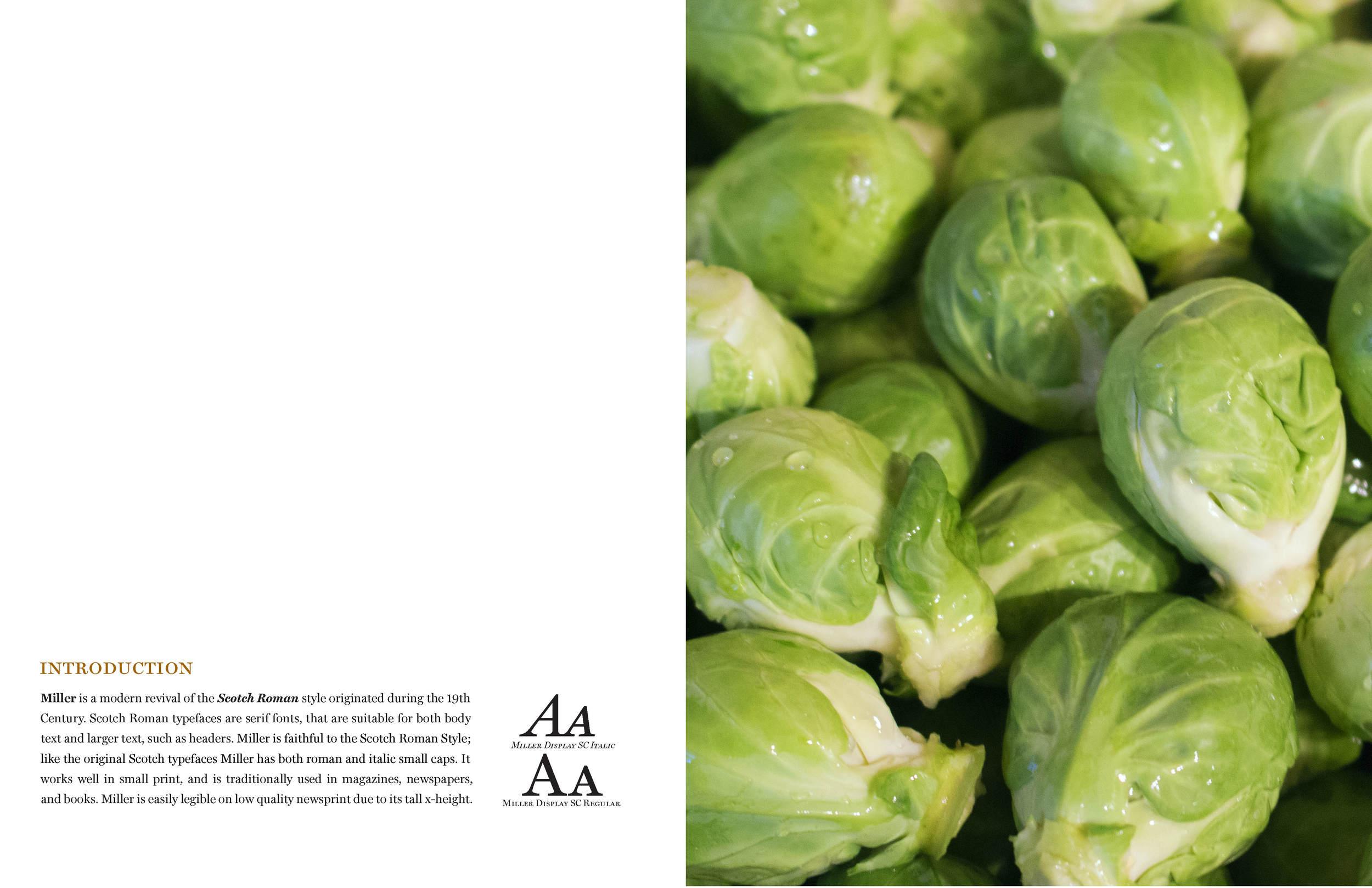 Asyia Fisher - Miller Typeface Specimen (Revised Final)-12_8_14_Page_3.jpg