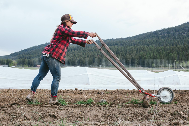 Two Bear Farm, Whitefish MT, Organic Farm