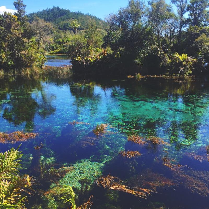 Te Waikoropupu Springs,
