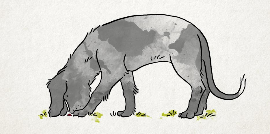 illustration_puppy_alsjeblieft_big.jpg