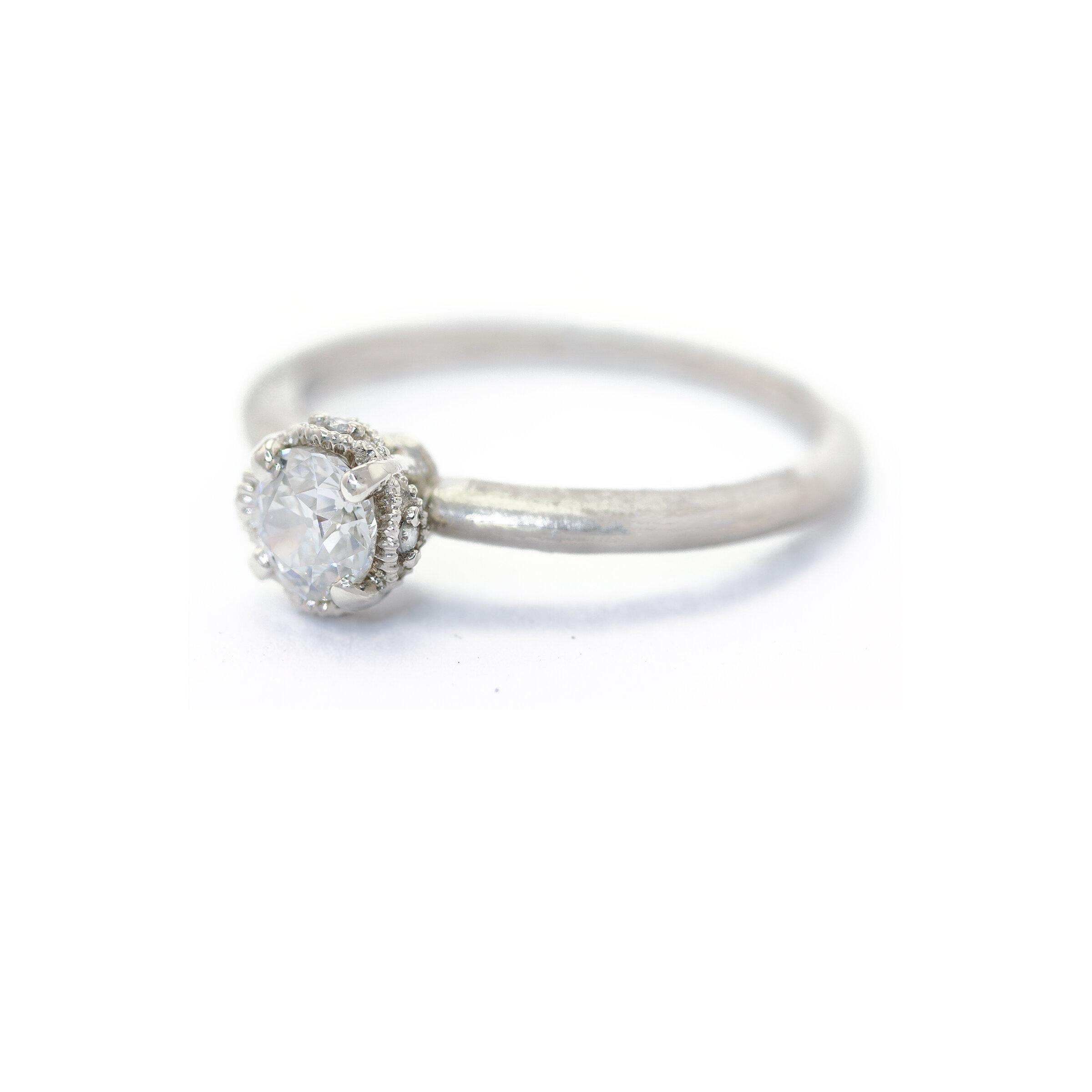 Ribbon Crown Ring (MT5017)