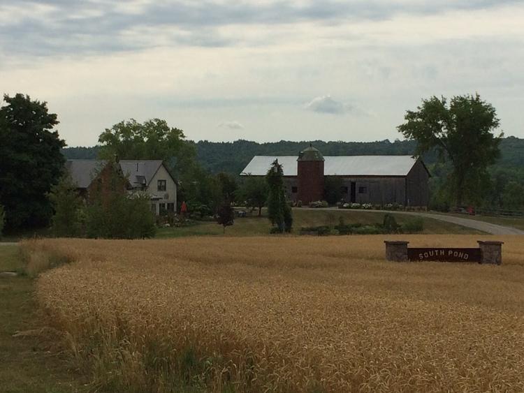 South Pond Farms 2.jpg