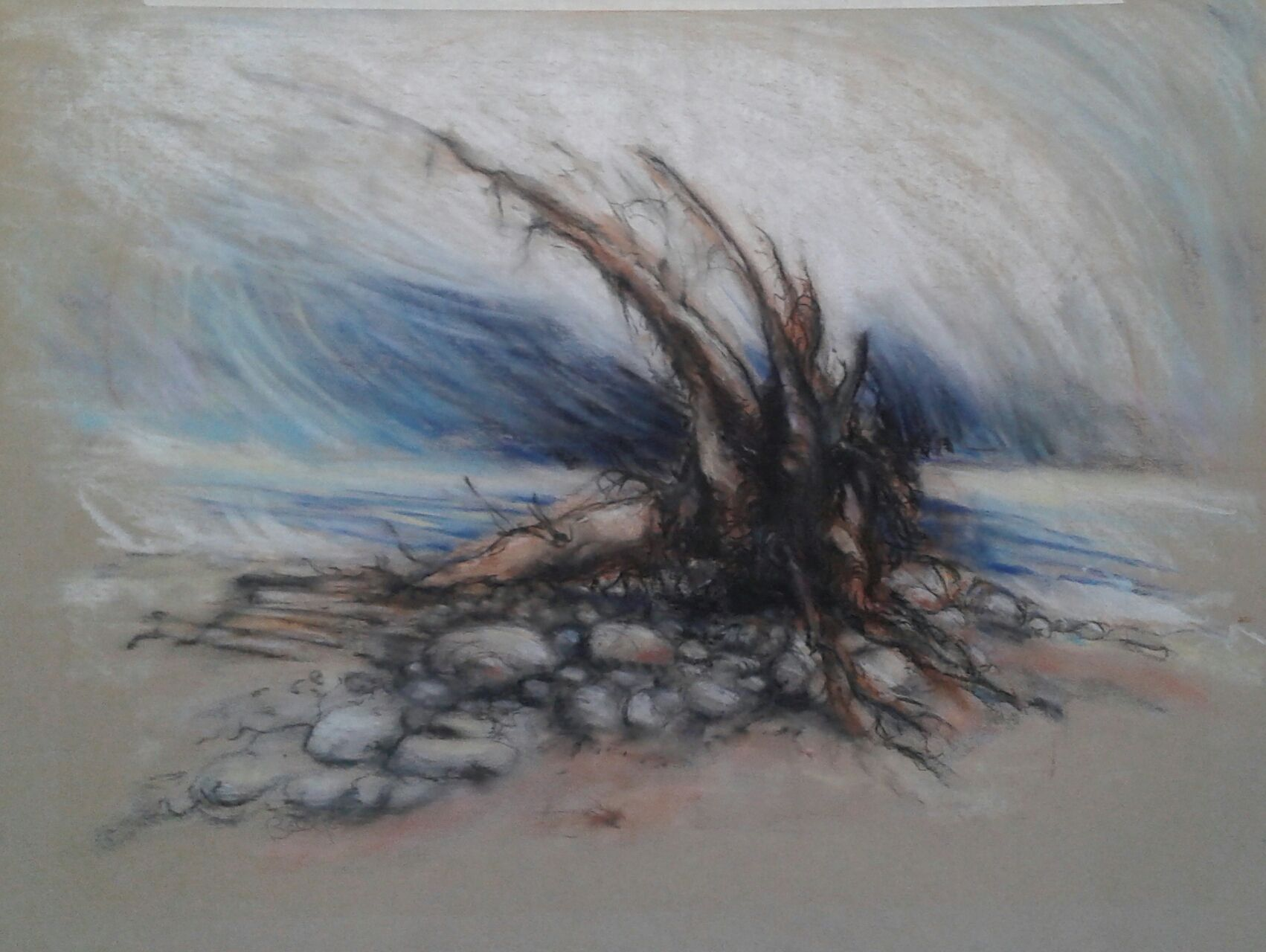 Pastel driftwood - KLAC.jpg
