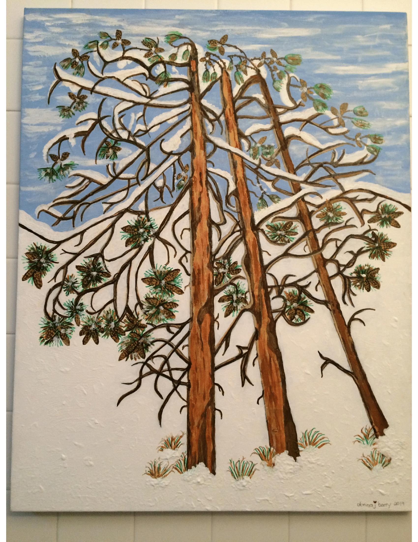 'Snowfall on Ponderosa Pines in Colorado'