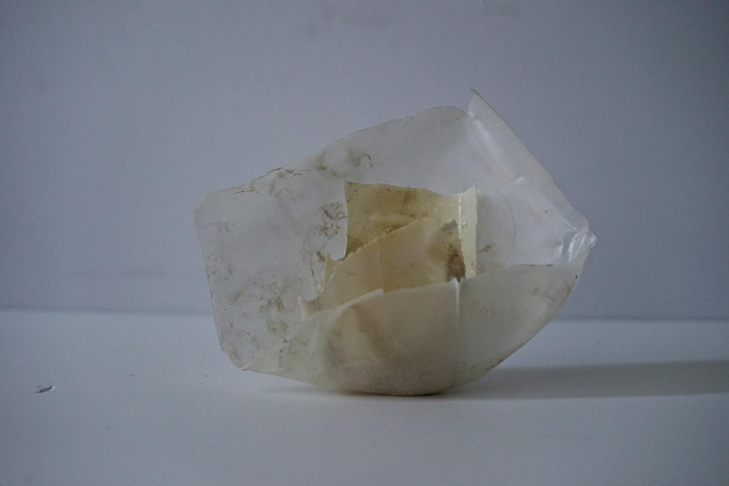 plastic conch shell.JPG