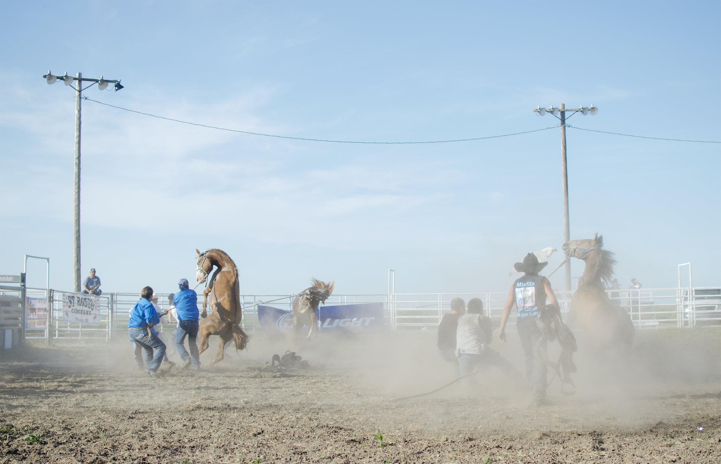 Rodeo, Wild Horse Race.  Rosebud.