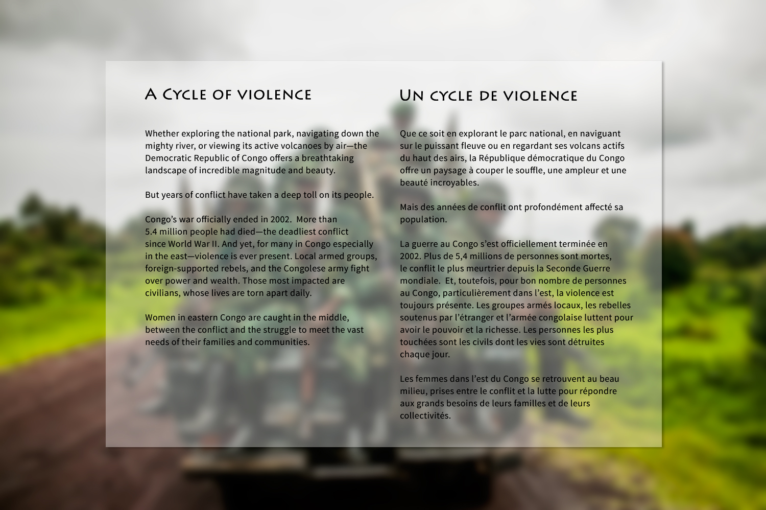 a-cycle-of-violence-textpanel2.jpg