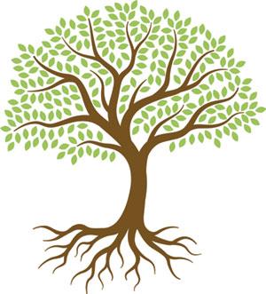 Tree_Icon_thumb.jpg
