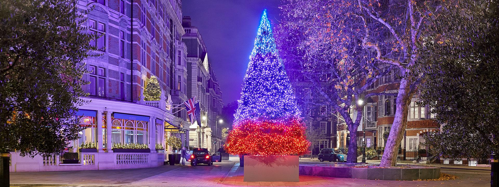 christmas-tree-2018-hero.jpg