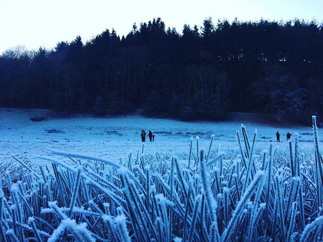 In the bleak mid winter. #season #shooting #shooting #game #christmas #wales #gunnsporting #winter