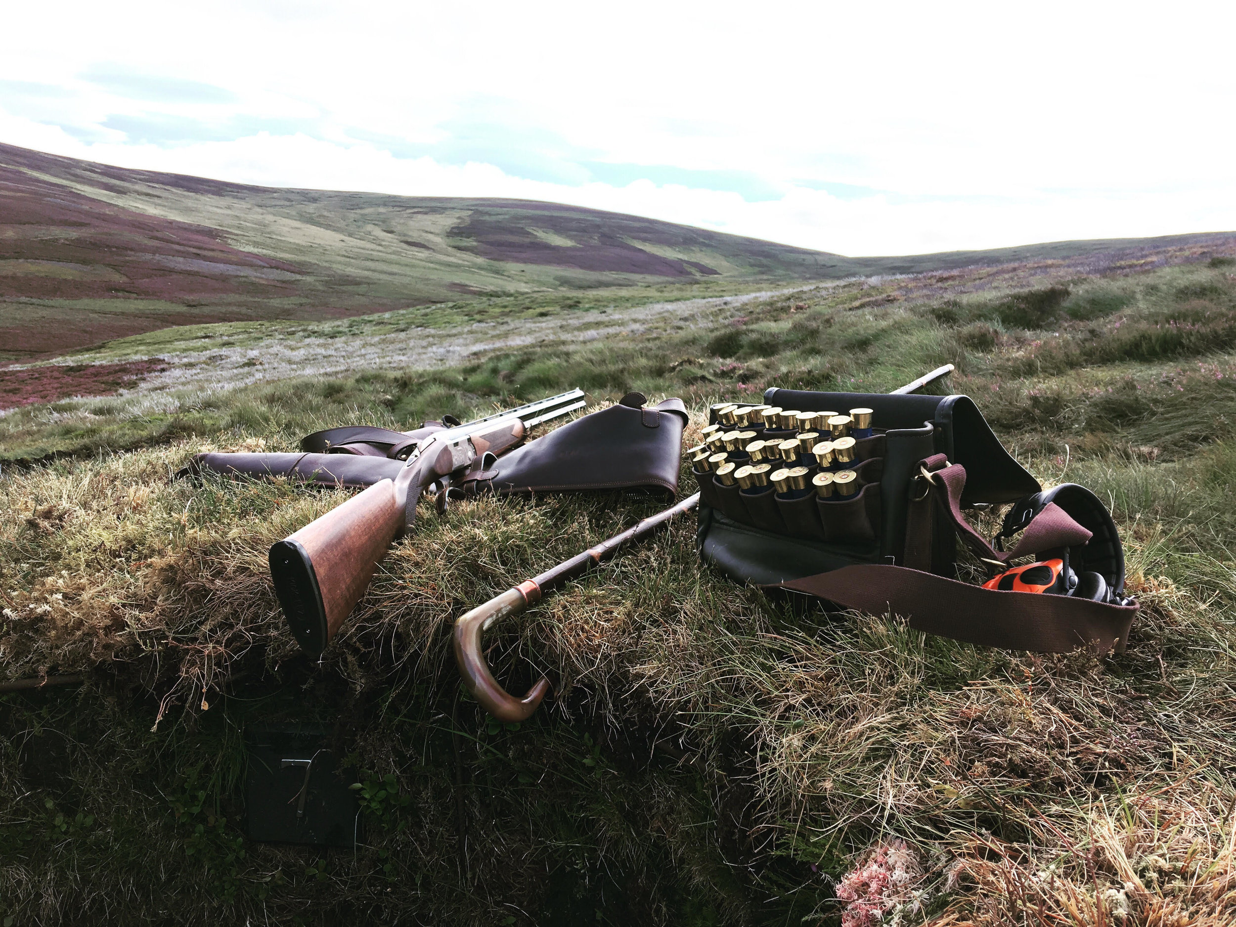 Grouse Shooting Scotland