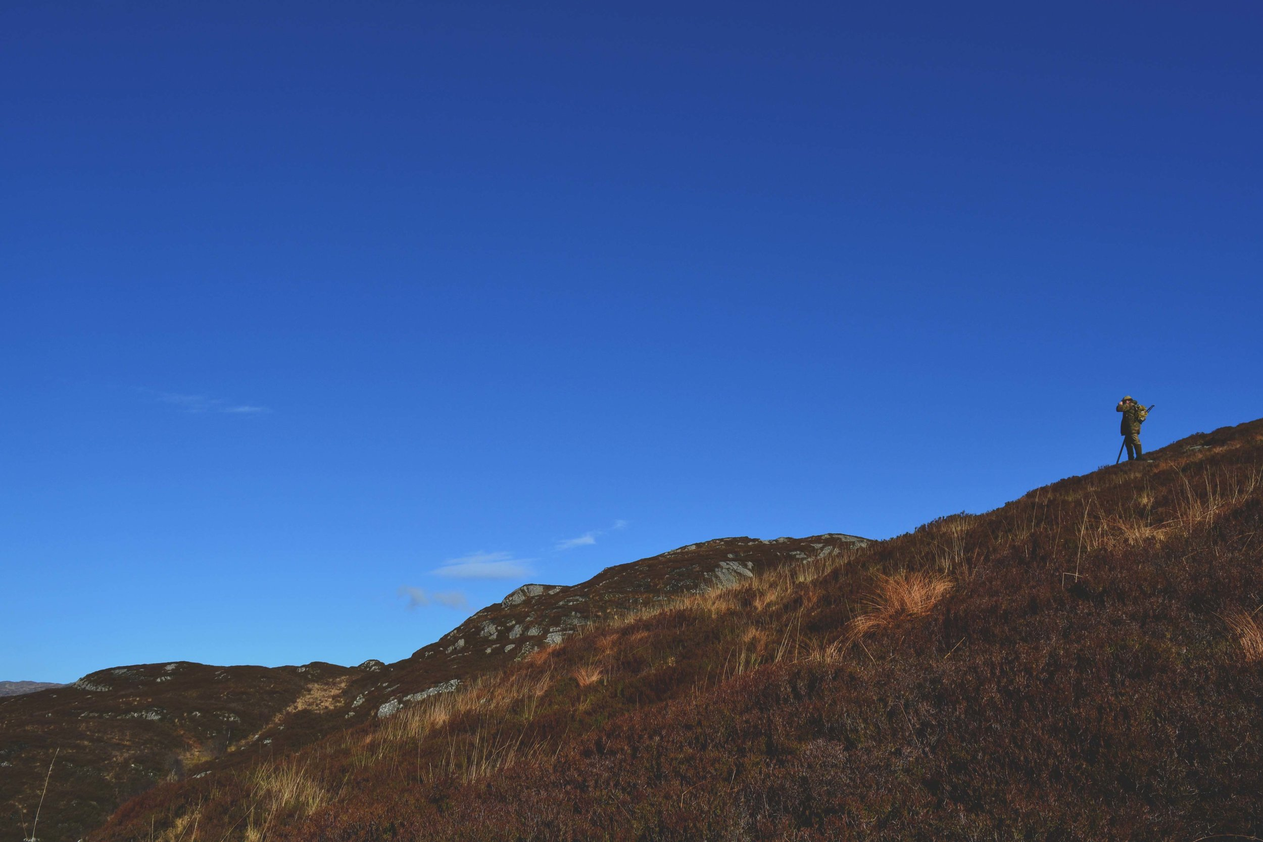 West Coast Highlands